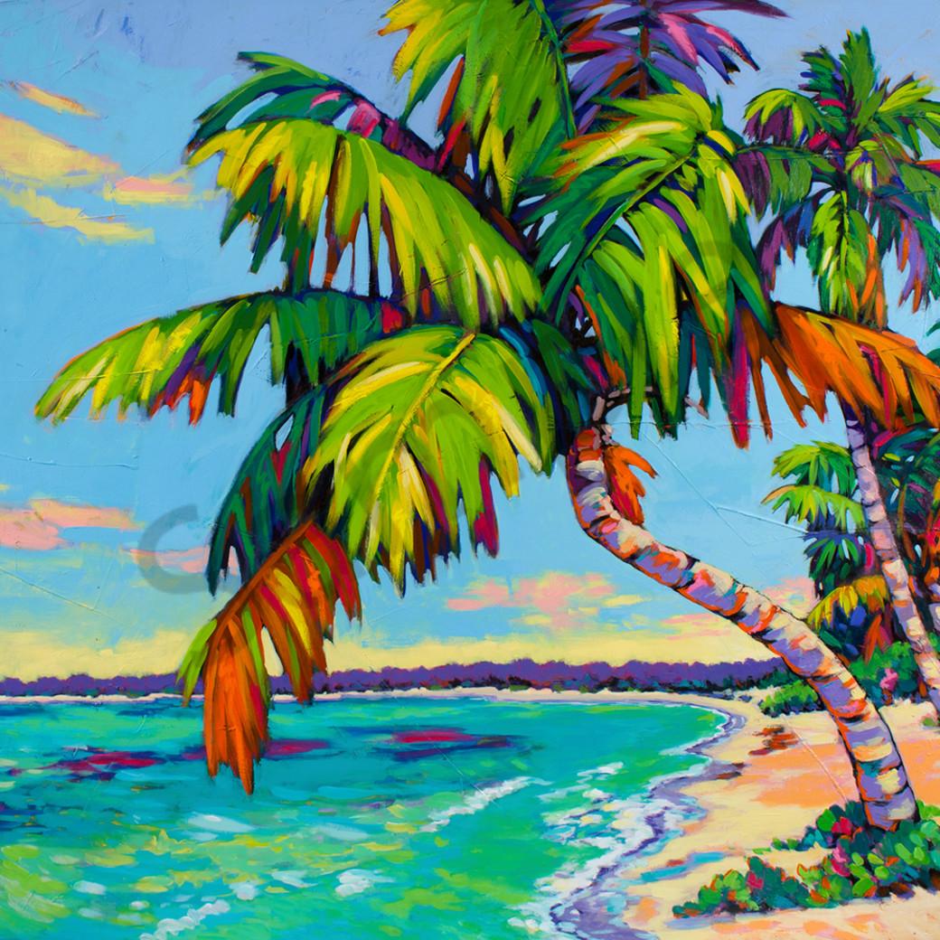 Tropical gettaway website d1et8t