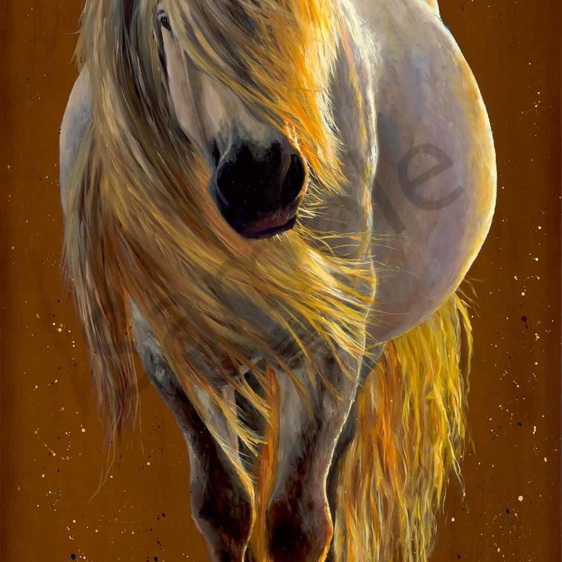 C clark dowden 065 my enchanted little round pony 2000px uvd7jt