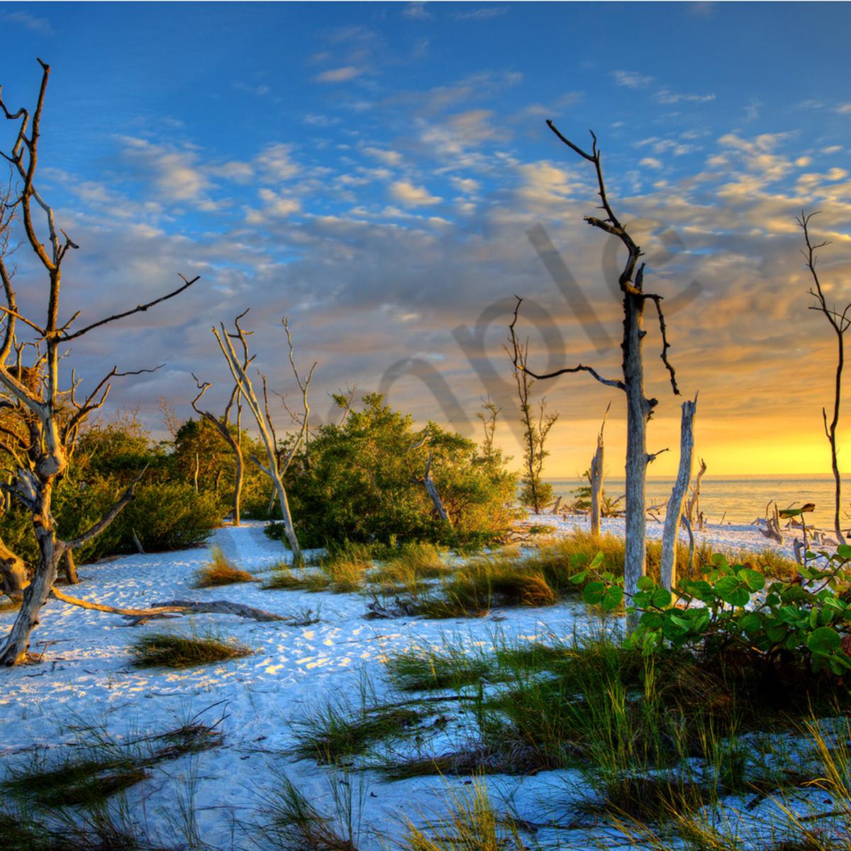 8017 hickory island  bonita springs fl gb7dib