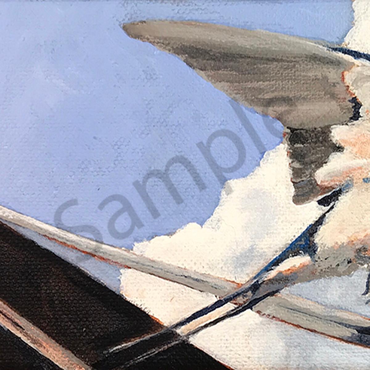 Asf  barn swallow j0iun8