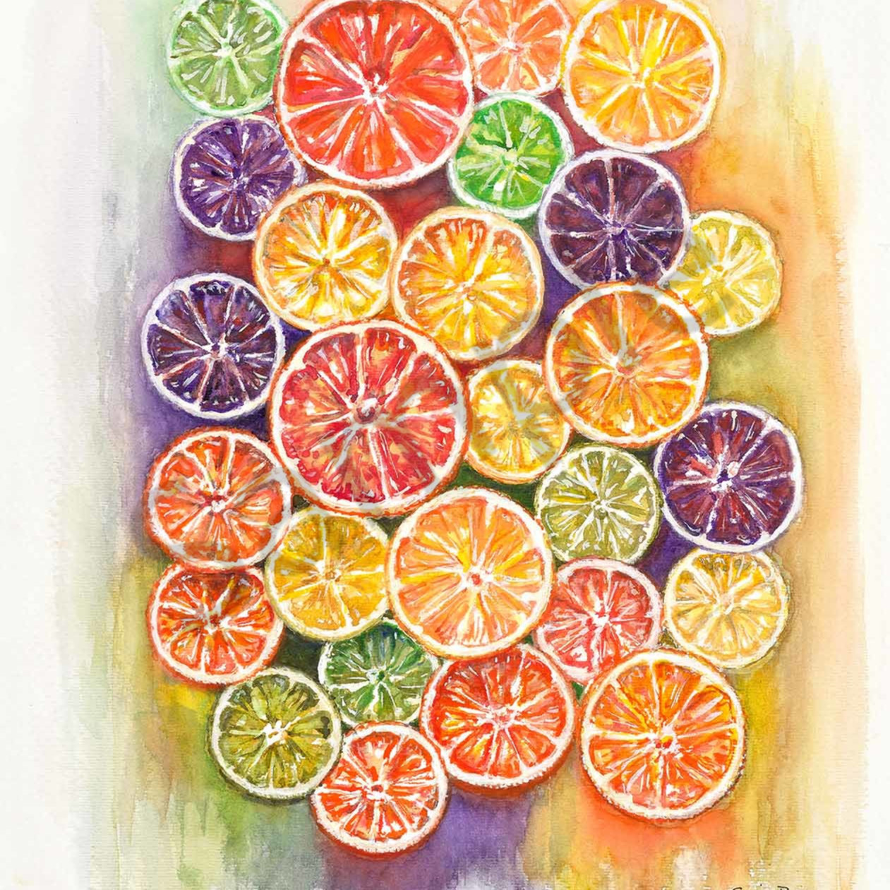 Sue battis 004 citrus slices 2000px ngrigq