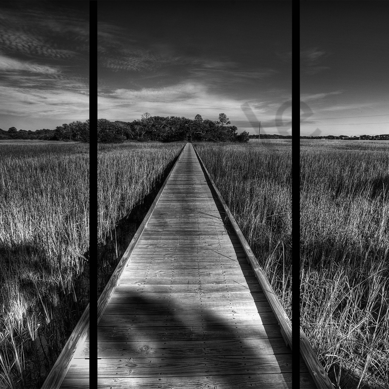 Edisto boardwalk 20x24 copy ehs4vv