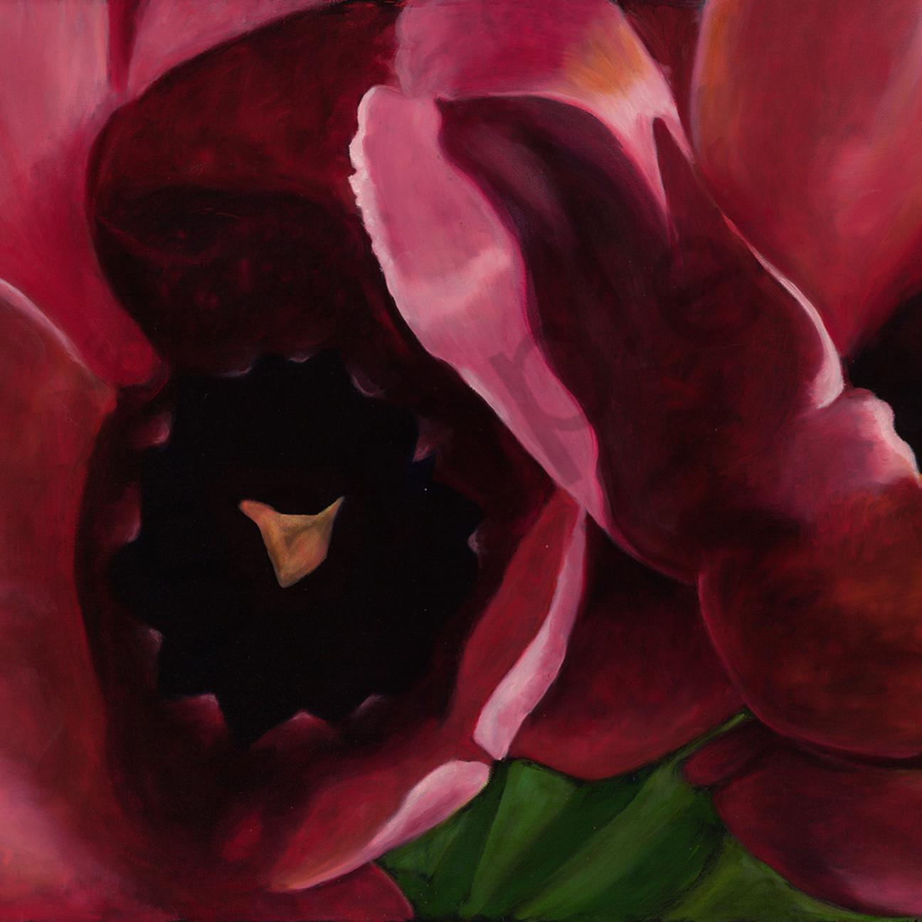 Moggre red tulip i ab8csm