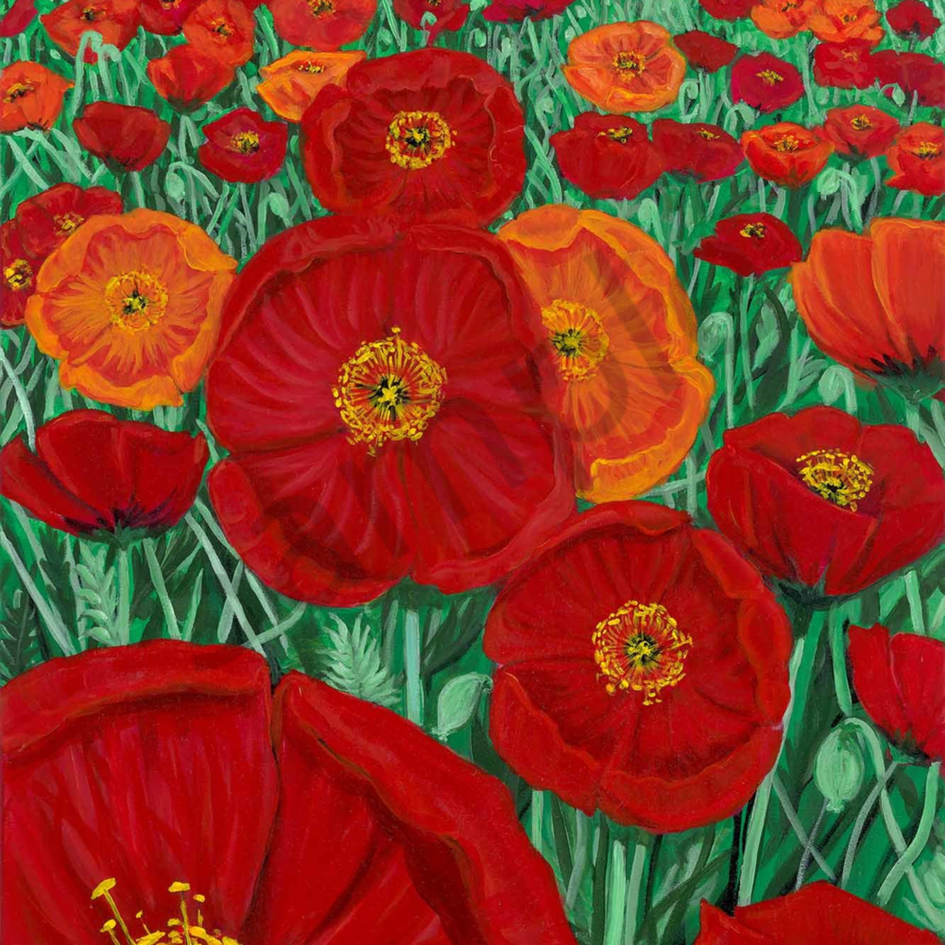 H mitra 009 a field of poppies 2000px vf4mqw