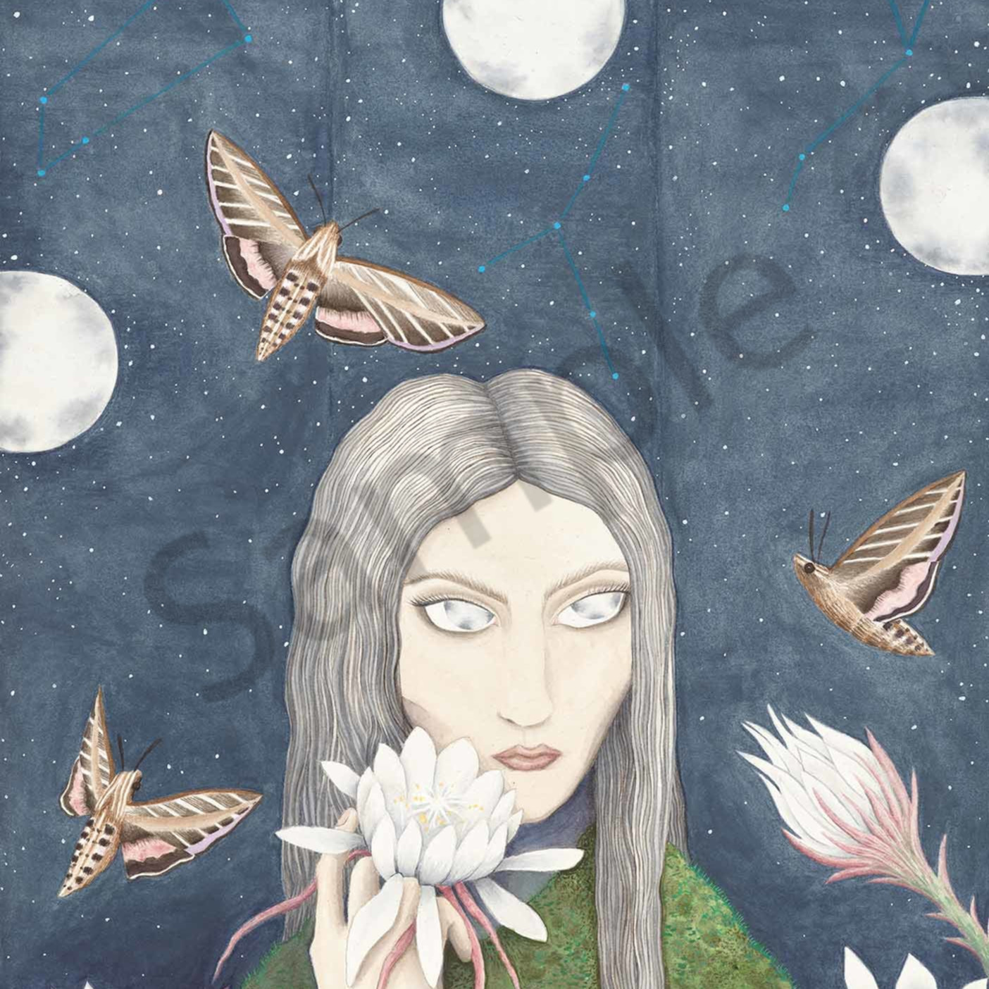 Phoebe trafford 002 the moon is not asleep 2000px lc75wu