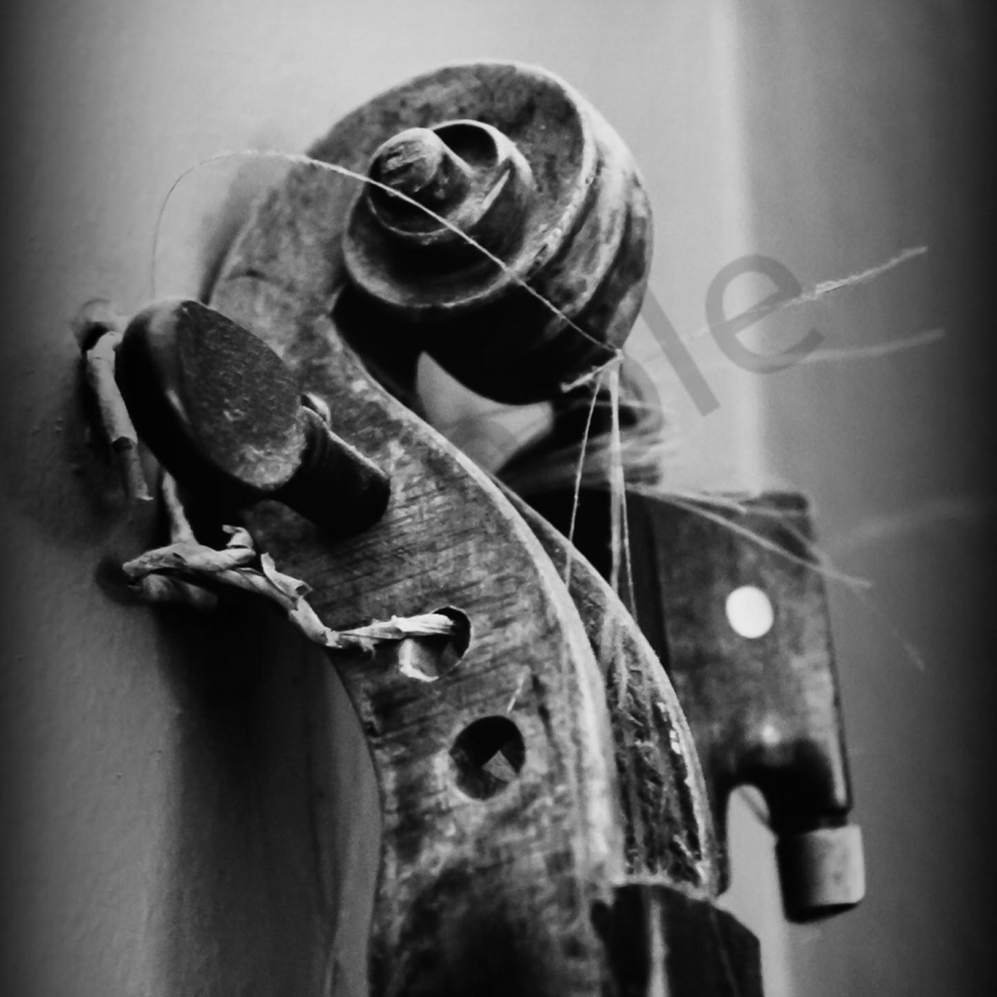 Violin scroll mrbzwd