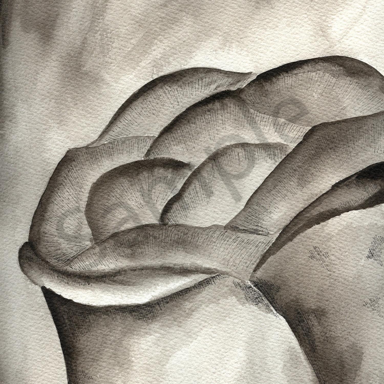 Midnightrose femkux