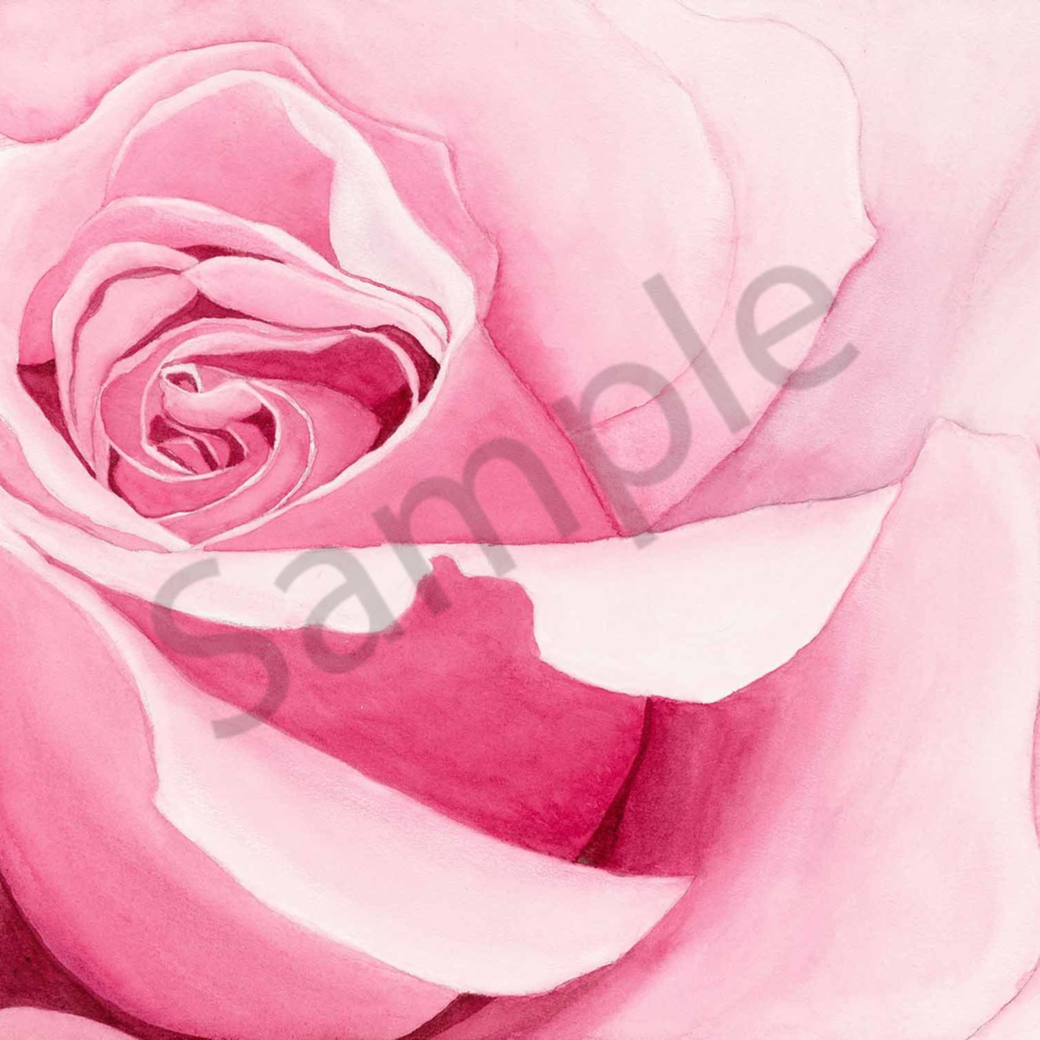 Janelle anderson 005 love of roses 2000px ibtsae