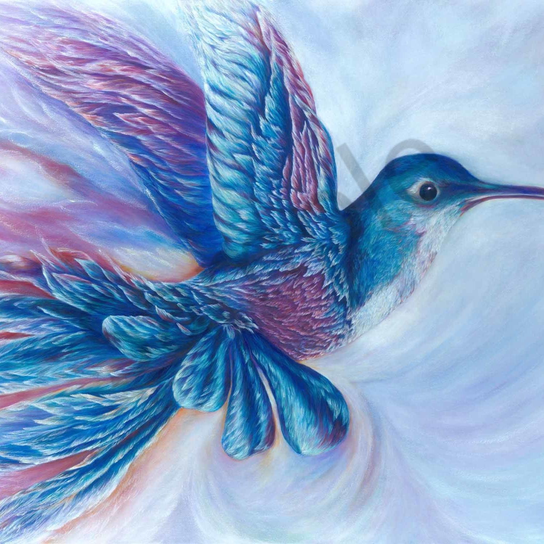 C hart 020 hummingbird 2000px yamnvx