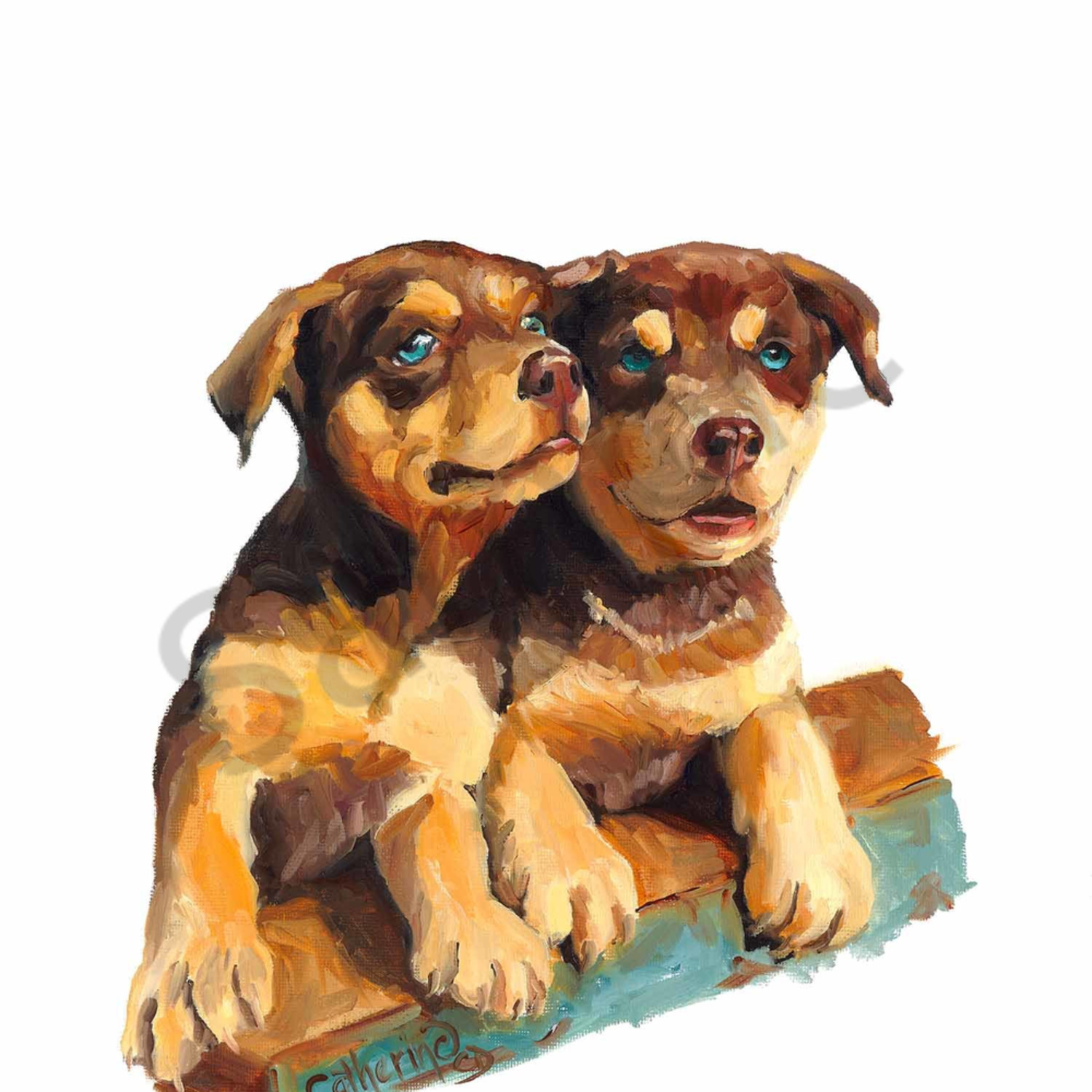 C clark dowden 070 tale of two pups 2000px zu3a65