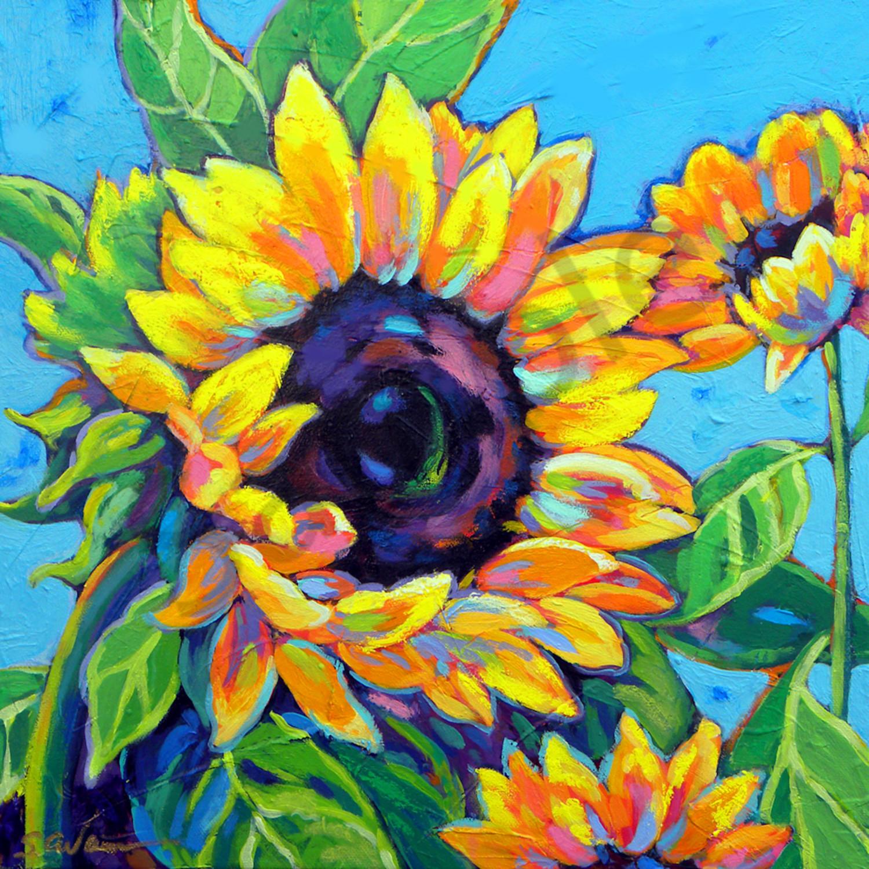 Sunflower dances in blue sally s file ywzck9