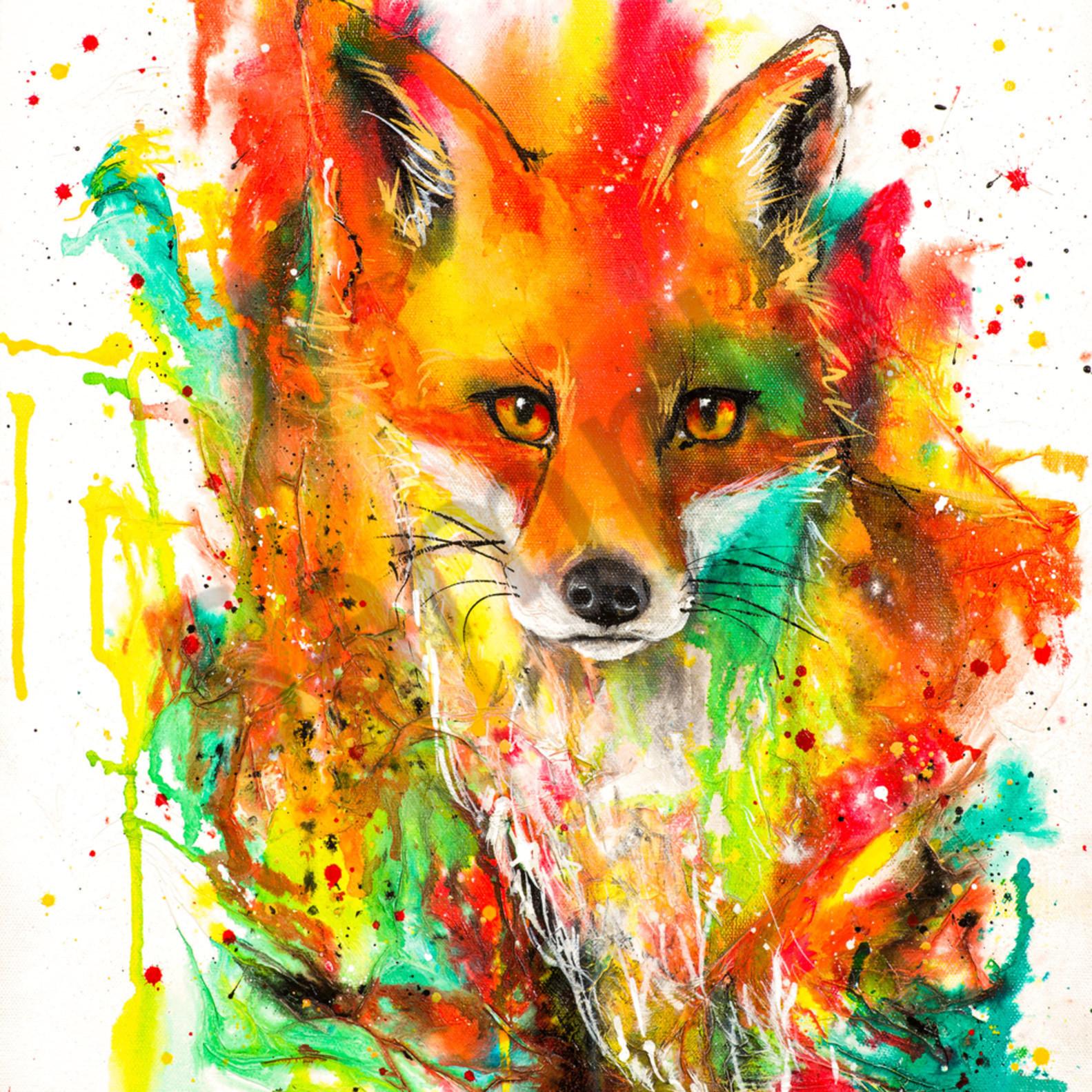 C clark dowden 014 fox 1 n53sy0