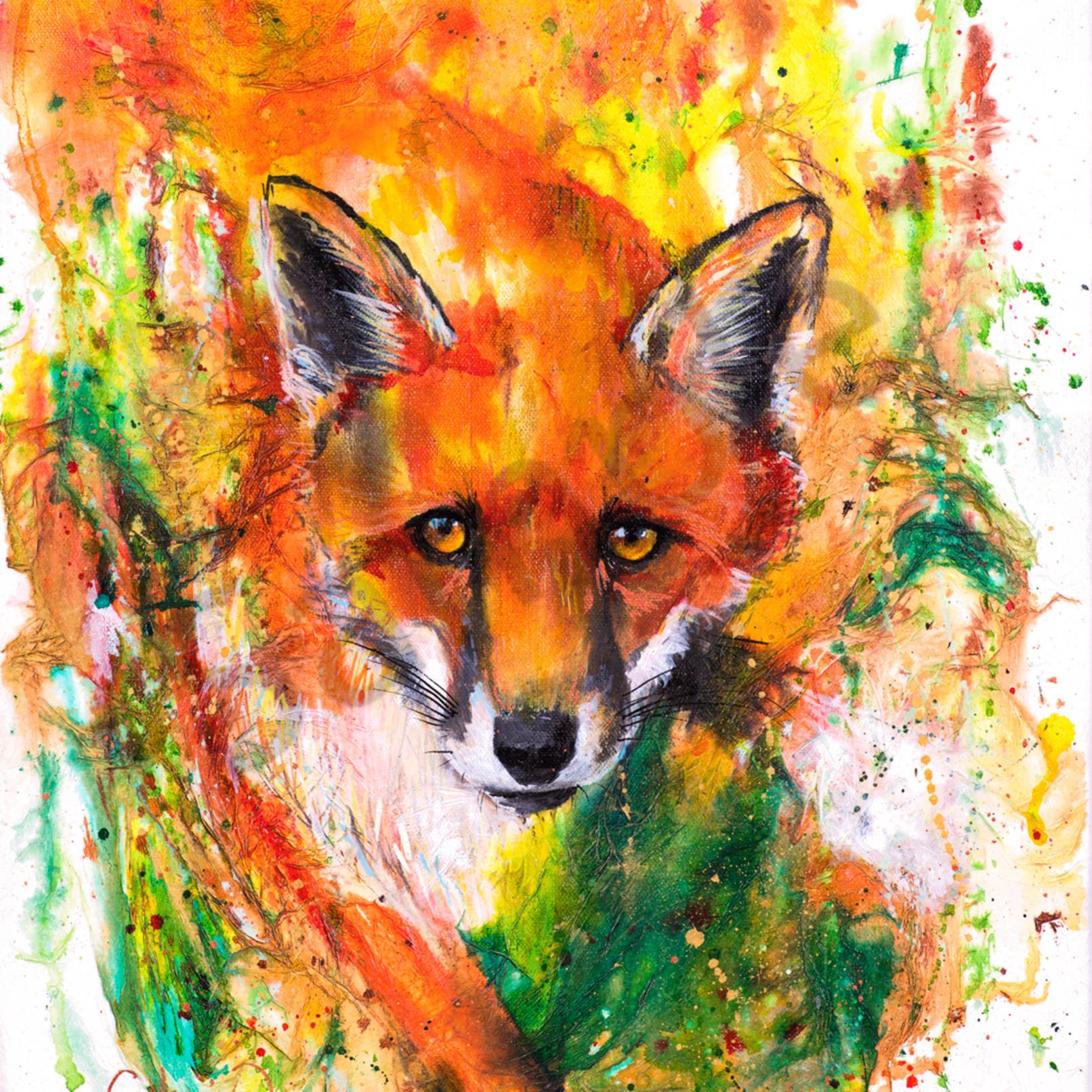 C clark dowden 002 fox fqlpr7