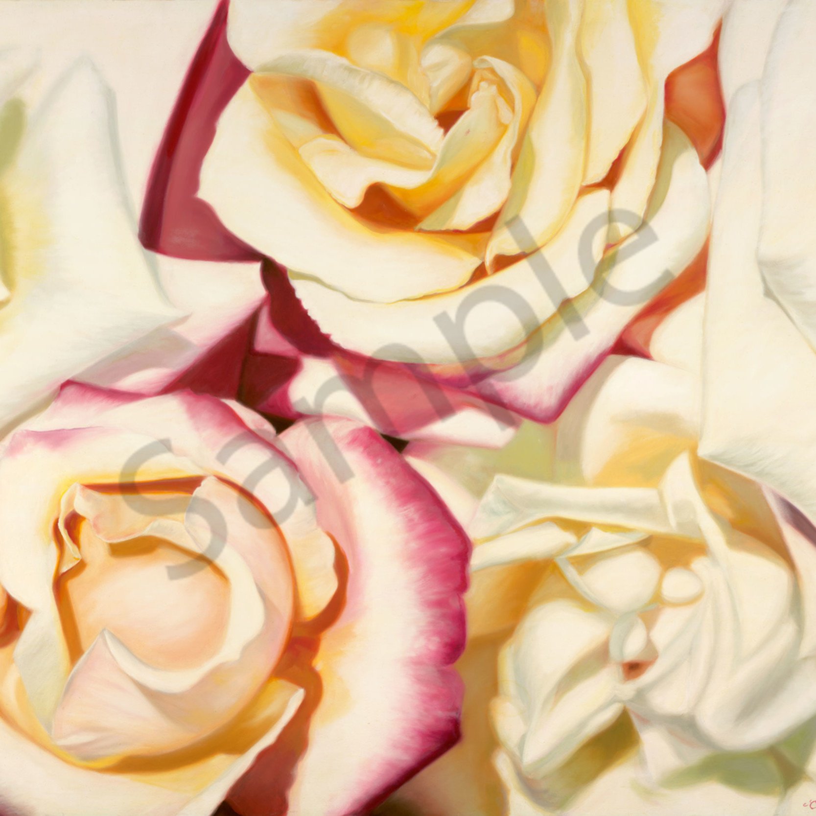 Clew 007 floral roses 100x120cm orig dvowtc