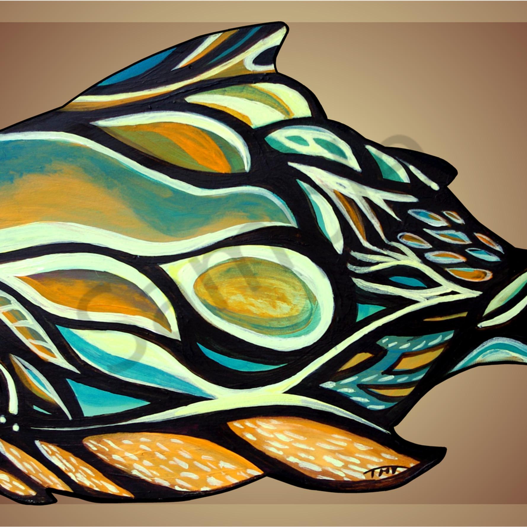Haidafish front hz6t14