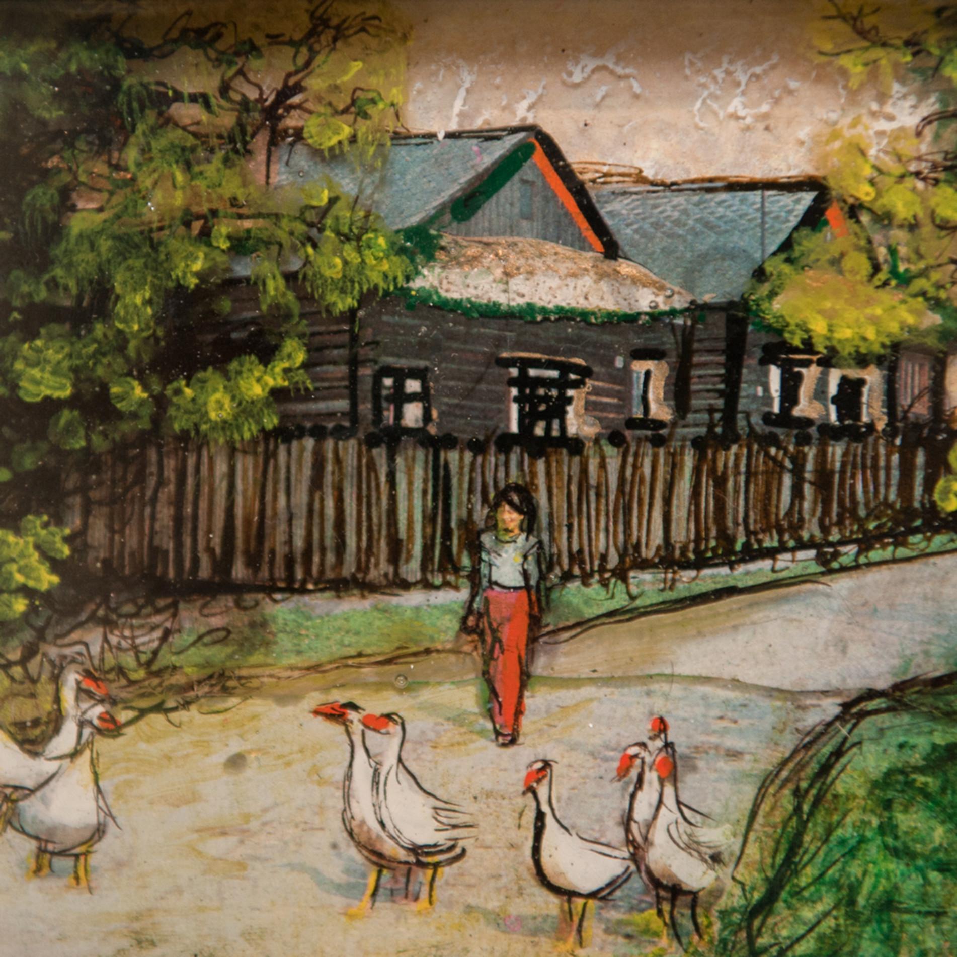 Feed the ducks vlehdw