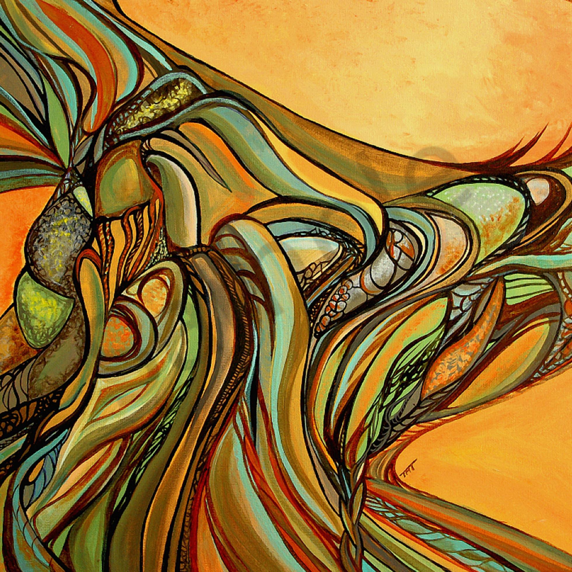 Sunsetssurroundus mzgkce