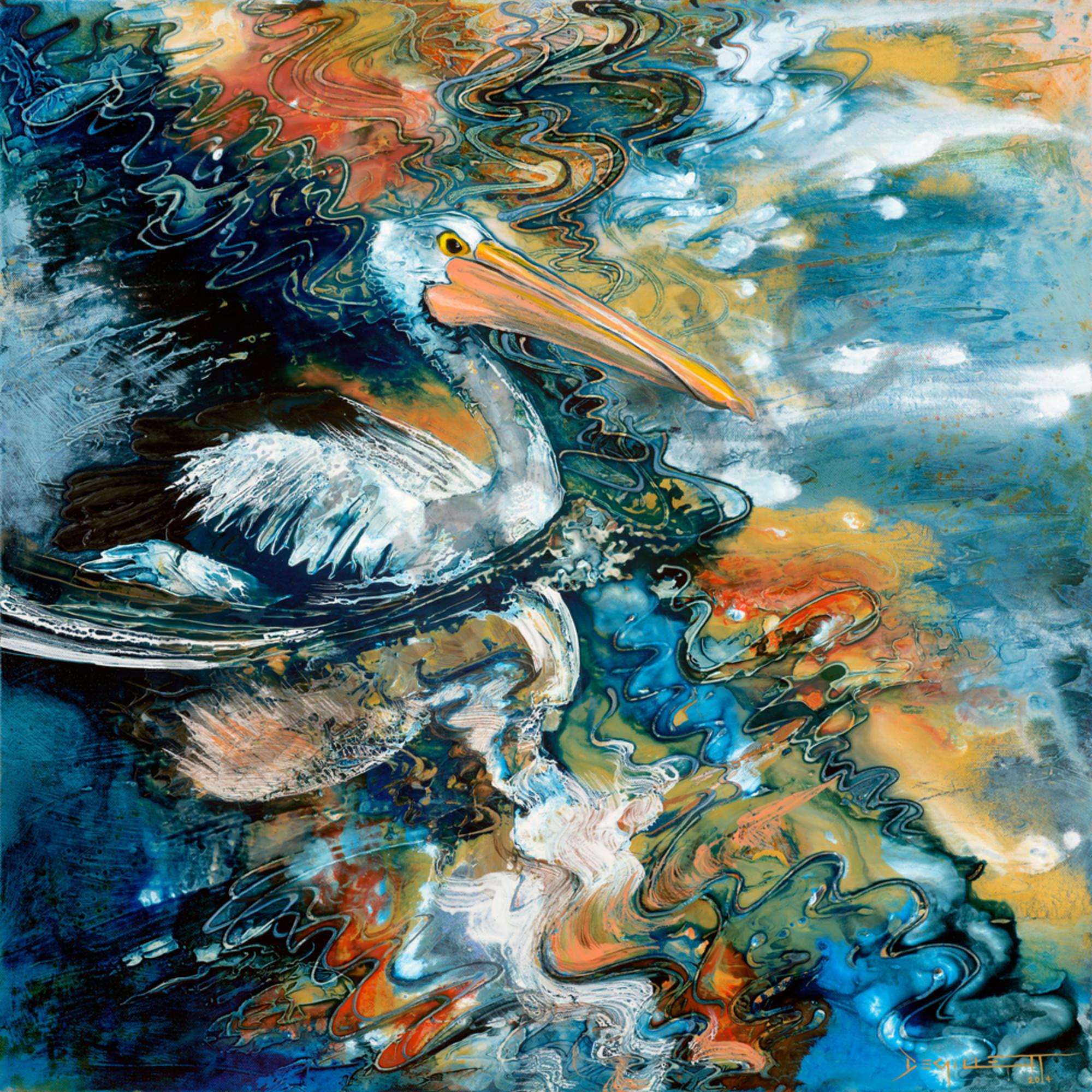 Dgil 028 pelican reflections tnyu6y