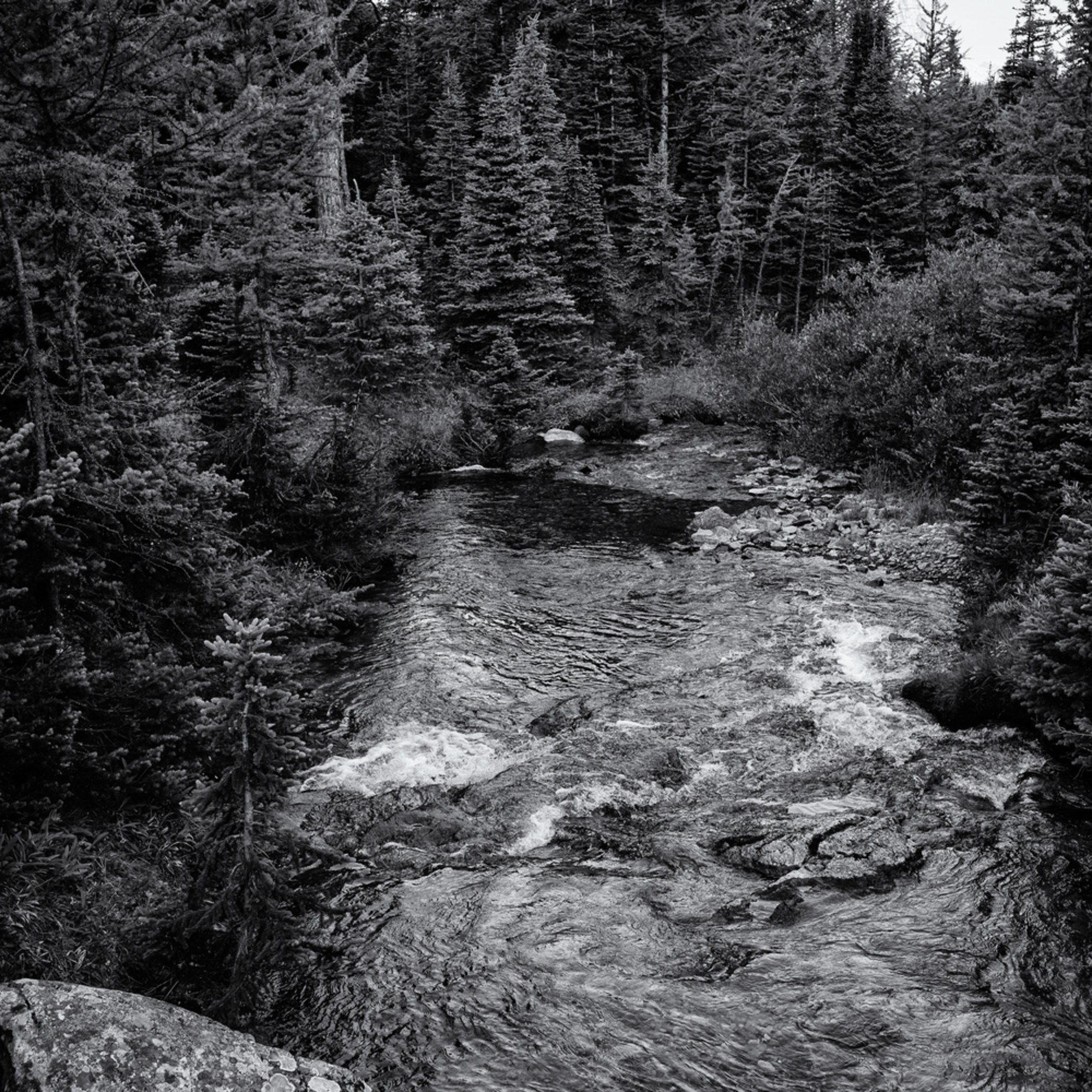 Mountain stream mtwmbt