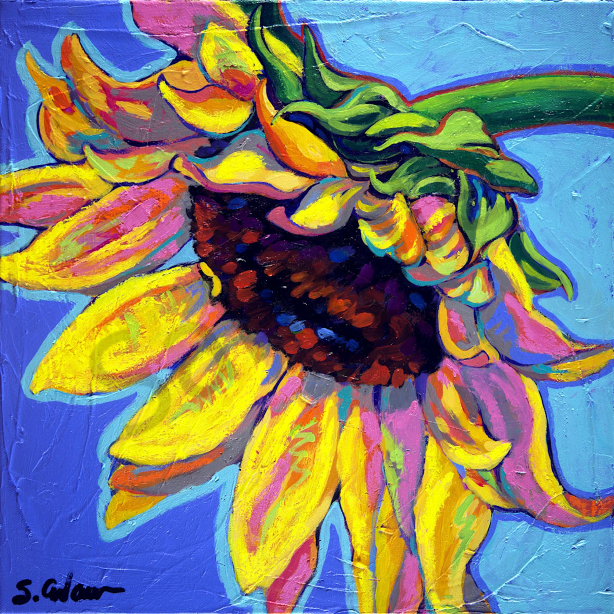 Sunflower bliss sally file pjwhxh