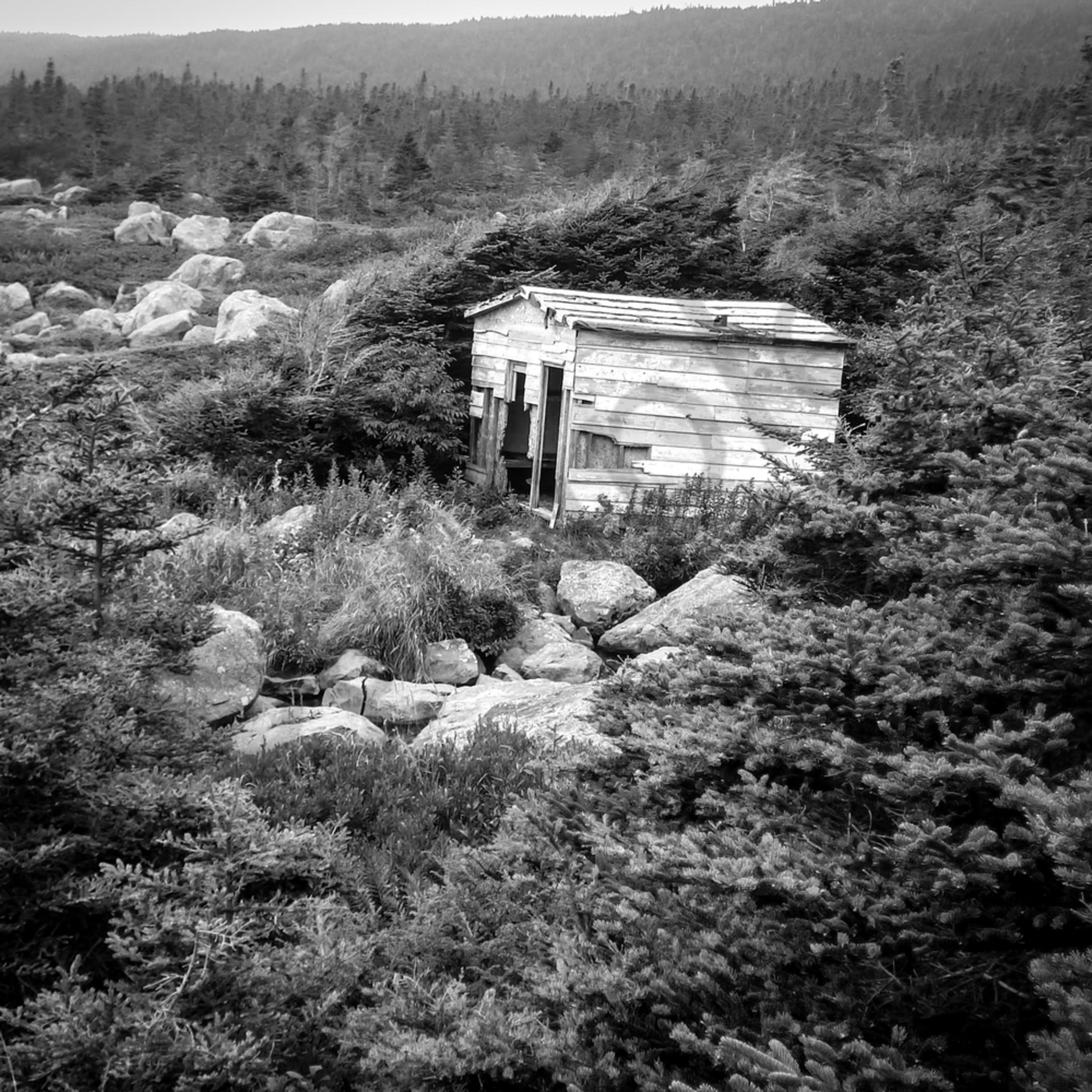 Abandoned fishing shack dnjbnc