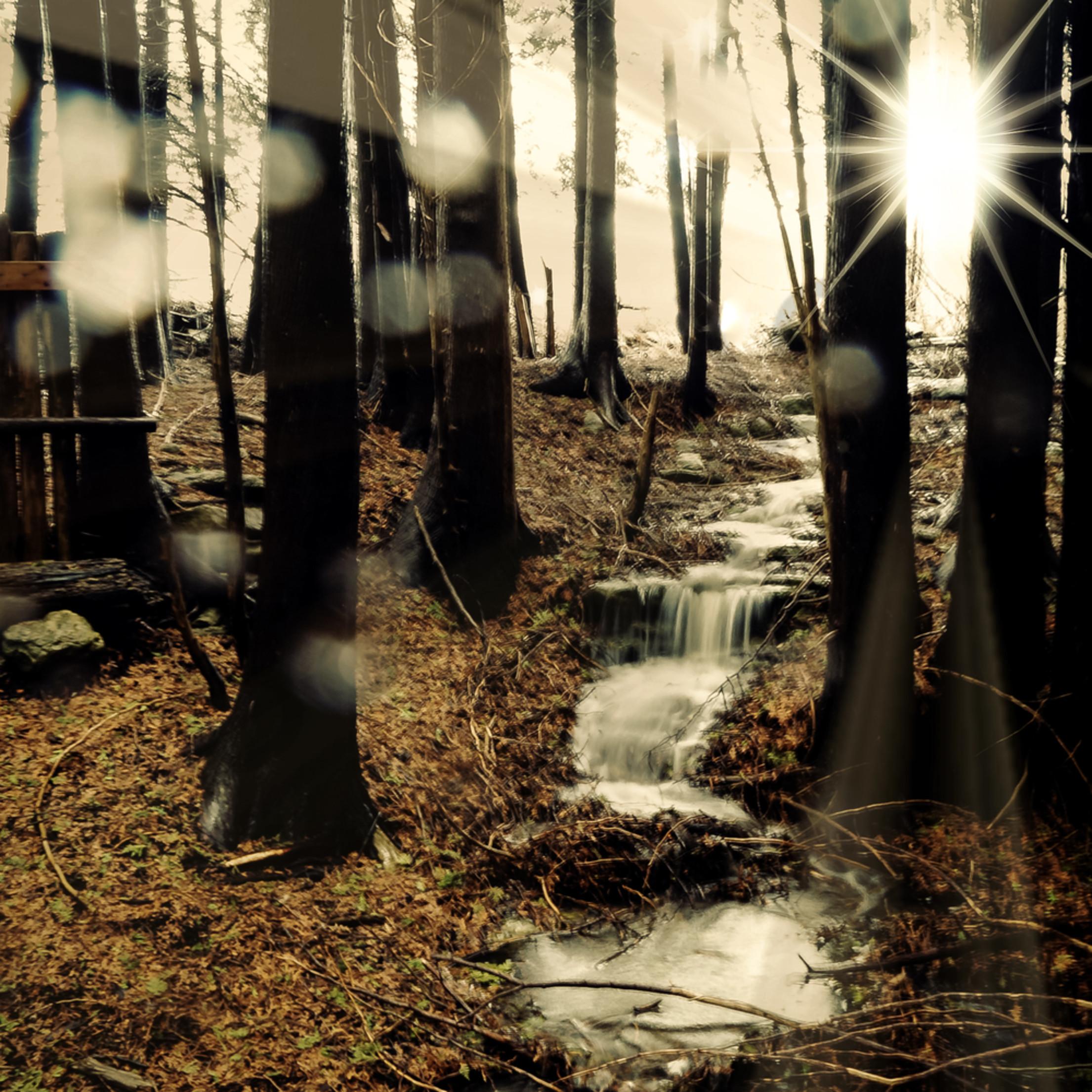 Woodland waterfall acig4h