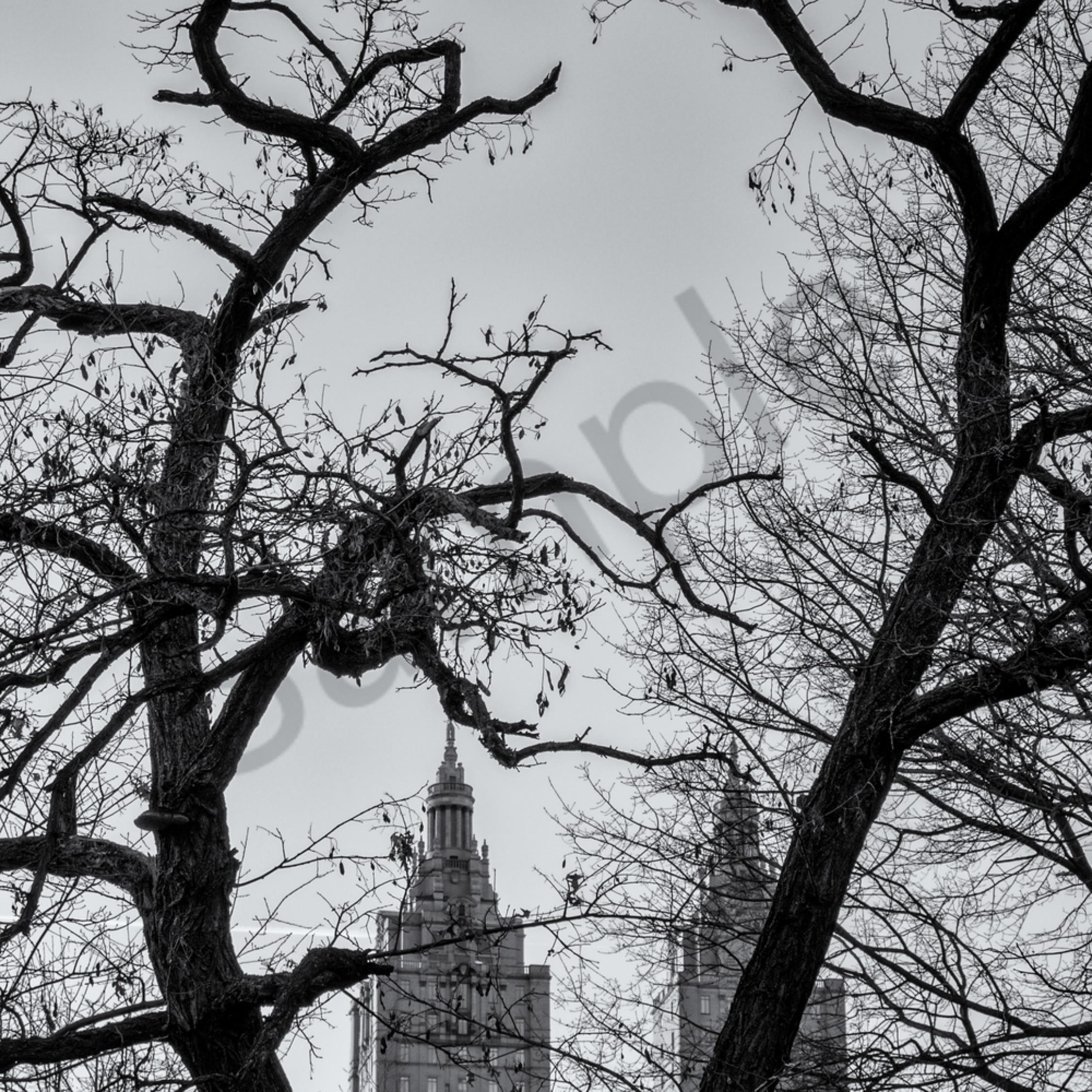 Central park nyc pltu2q