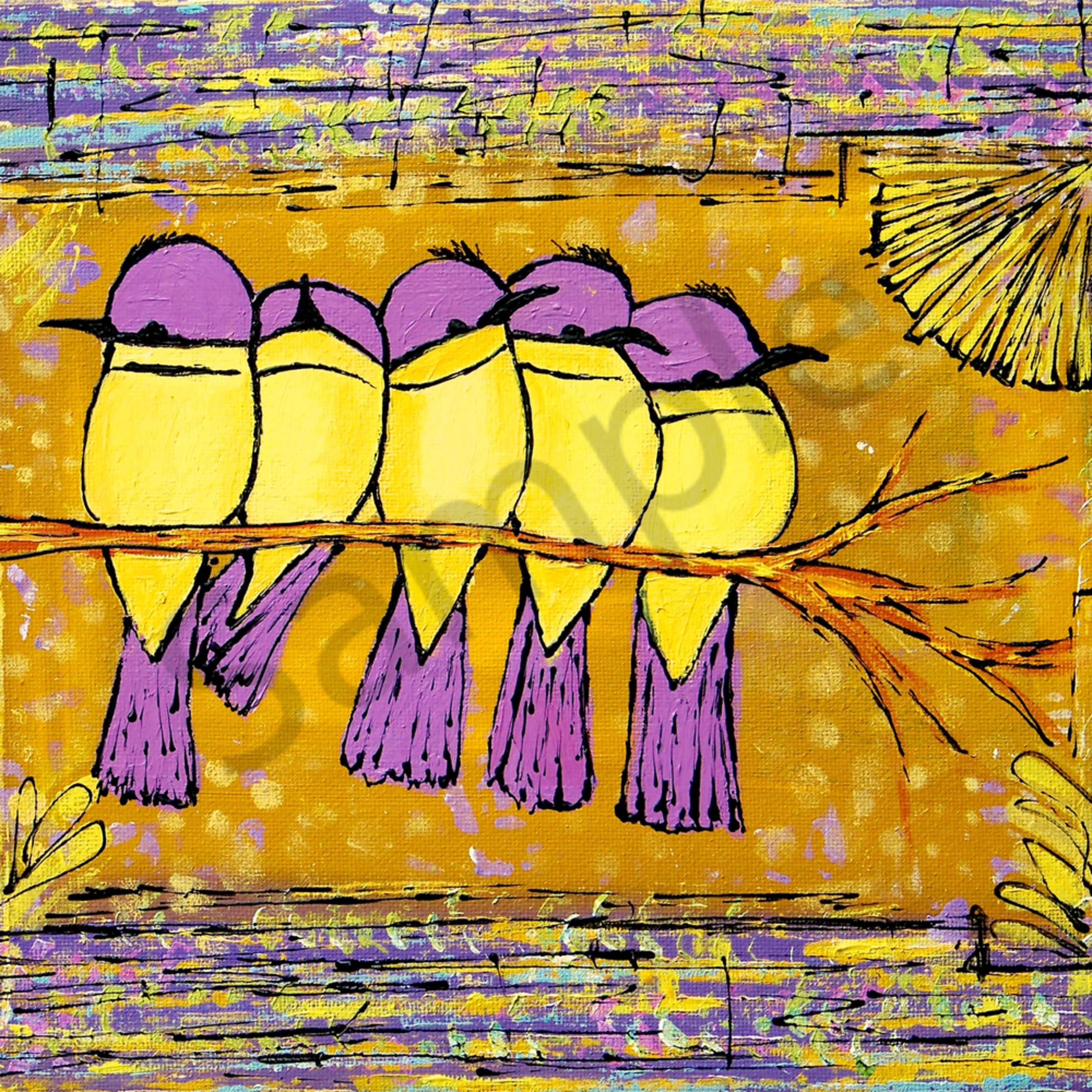 Purple capped chubby birds smqy3q