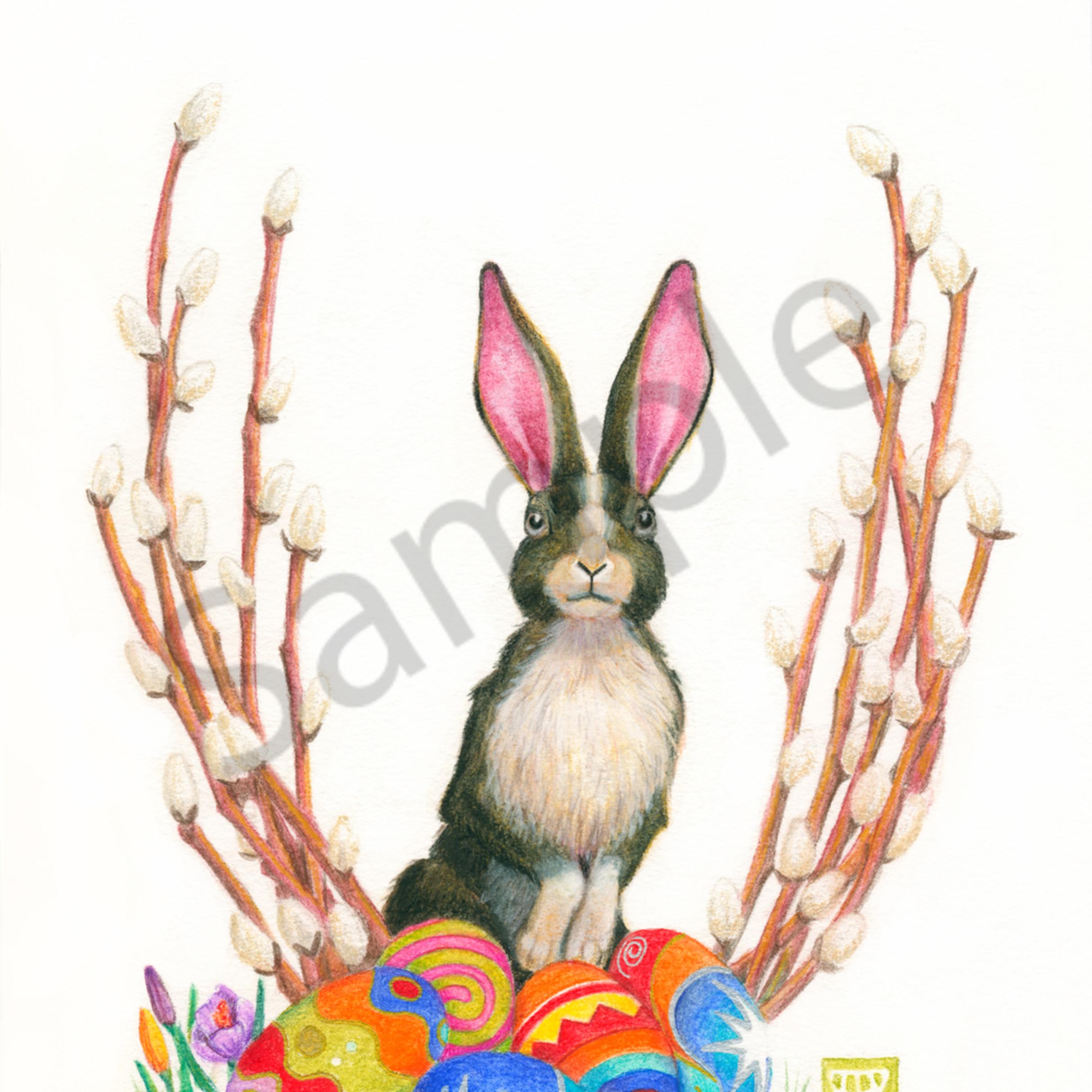 Ostara bunny2 olfpdo
