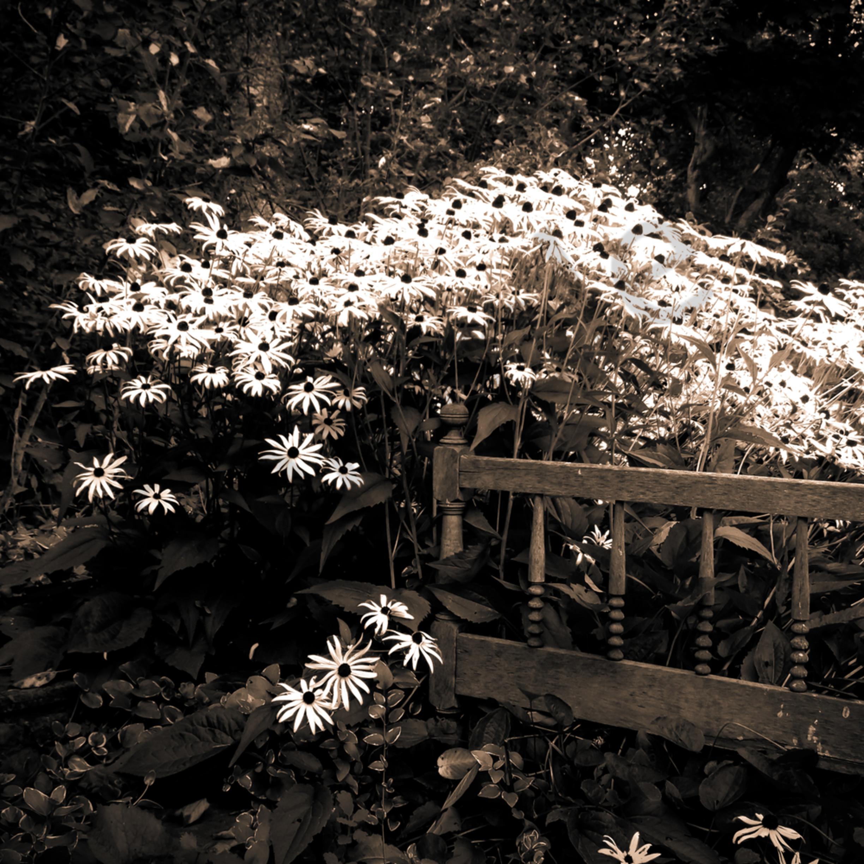 Vintage garden vnqojg
