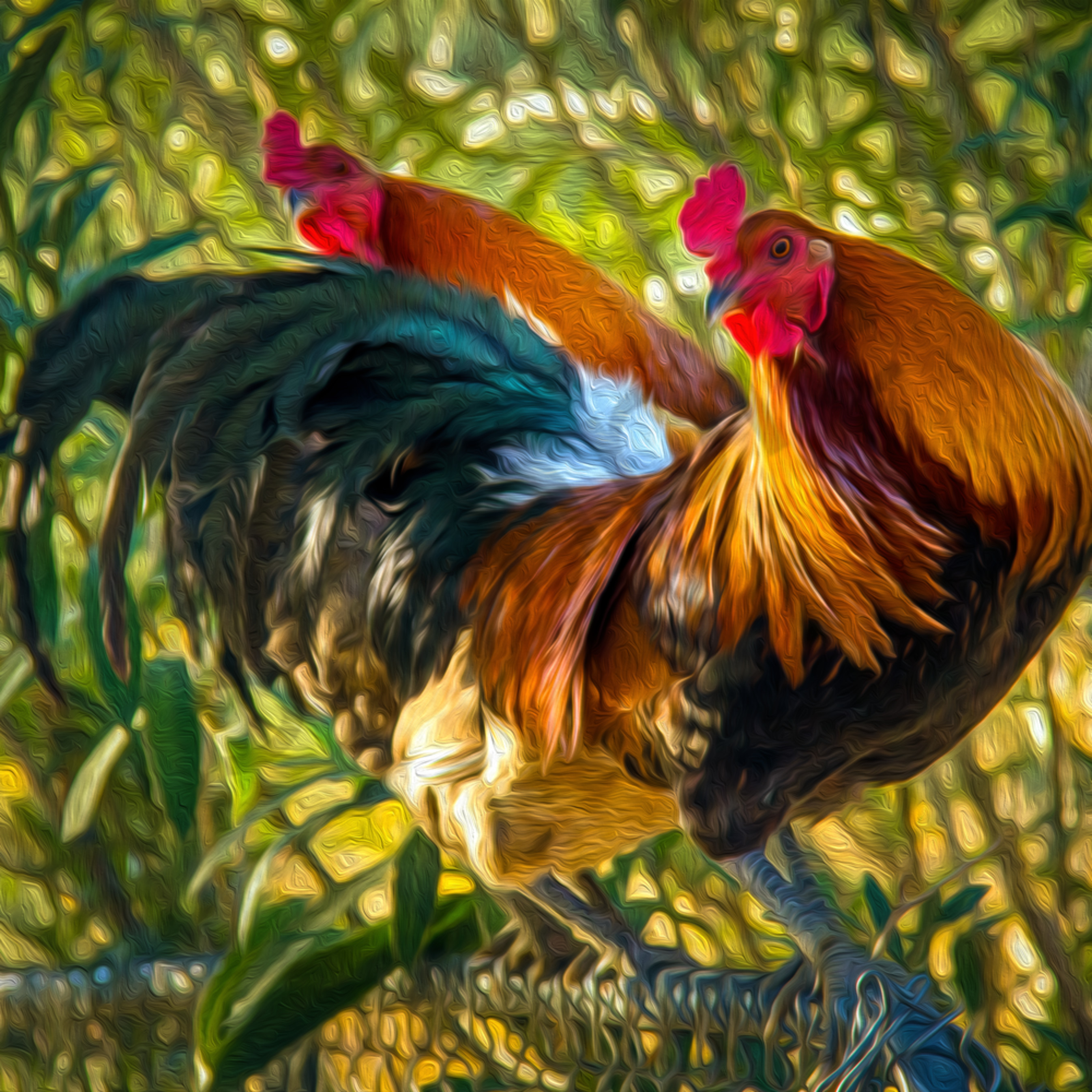 Amy s roosters2 oil cggyur