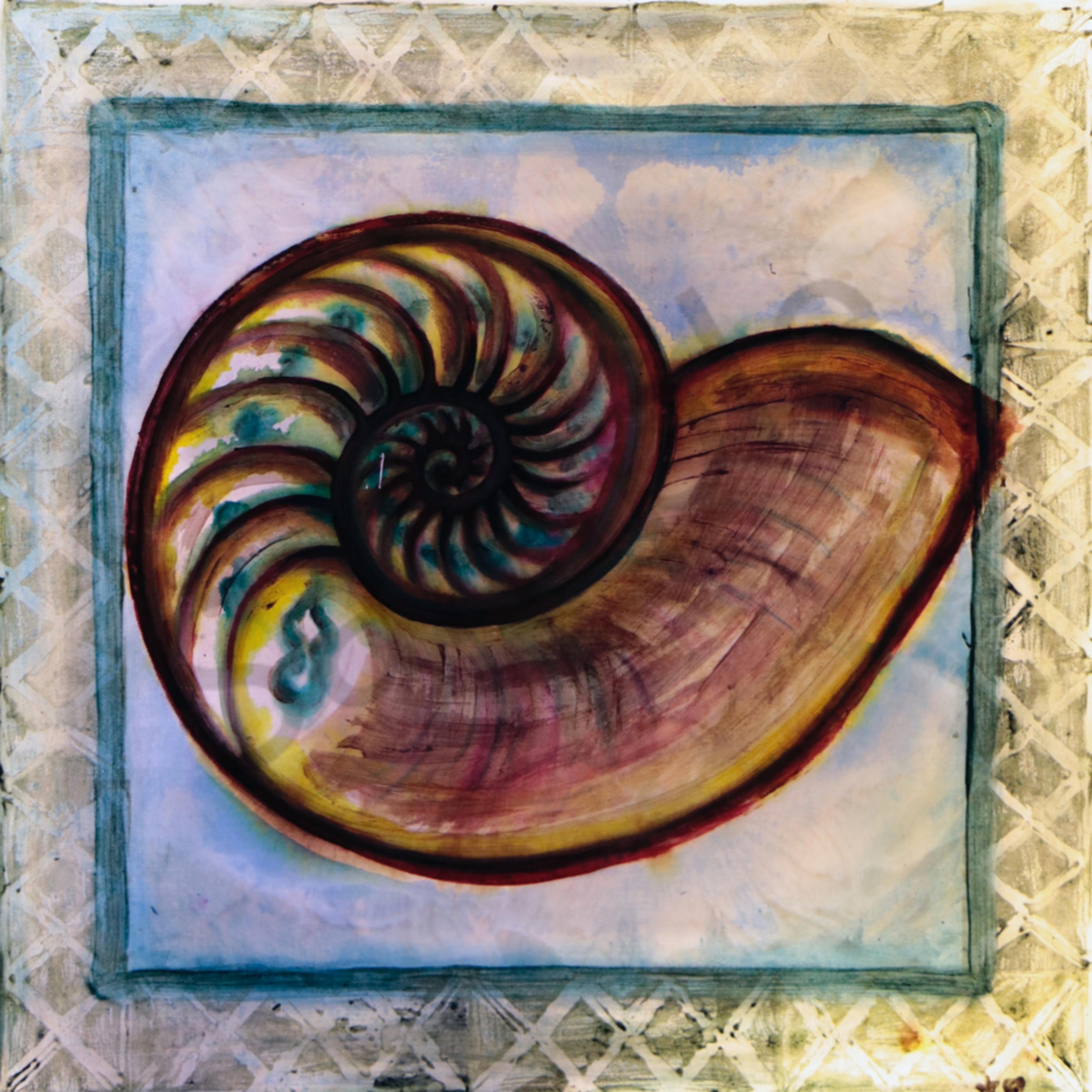 Nautilus rfvfjz