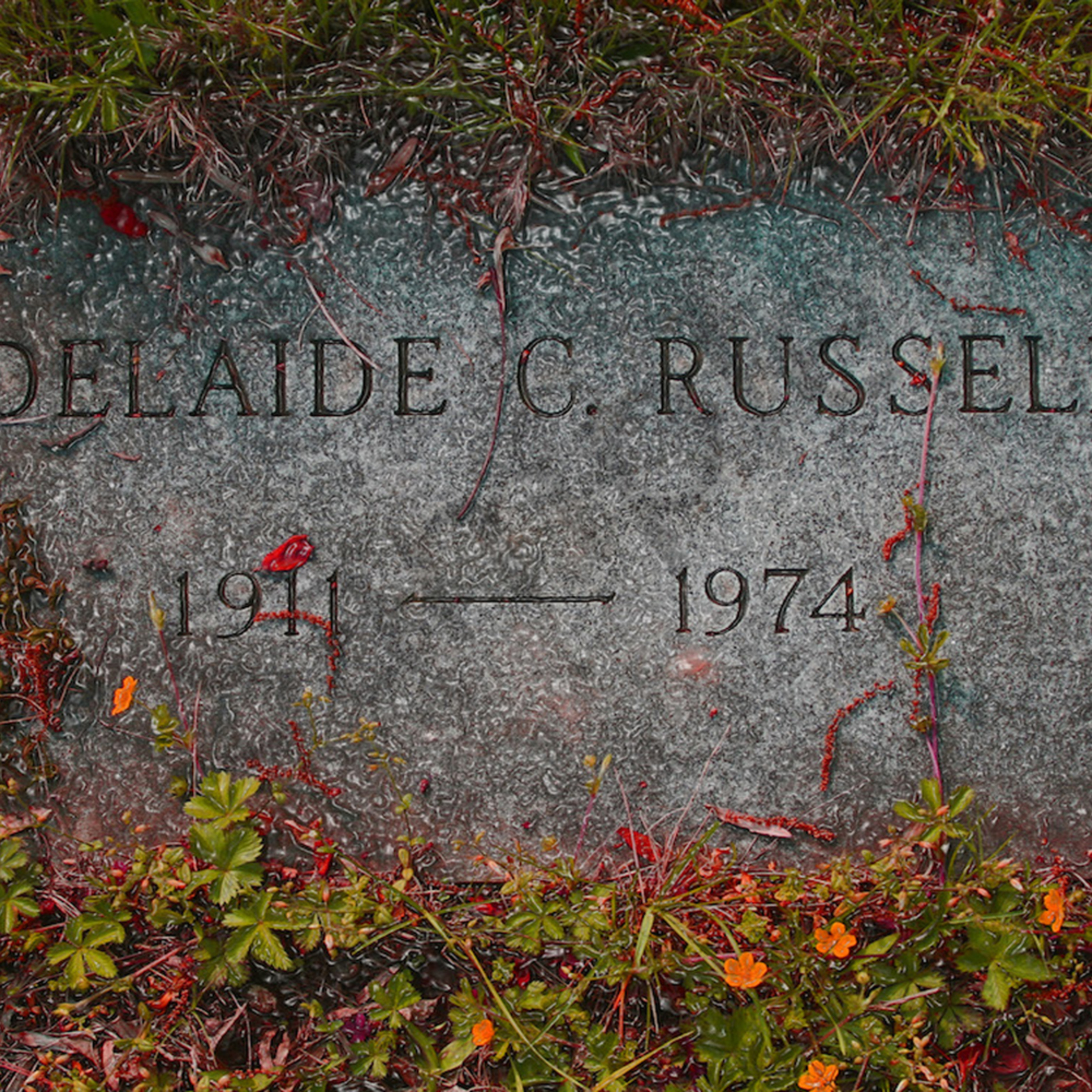 Adelaide c russell website s67ess
