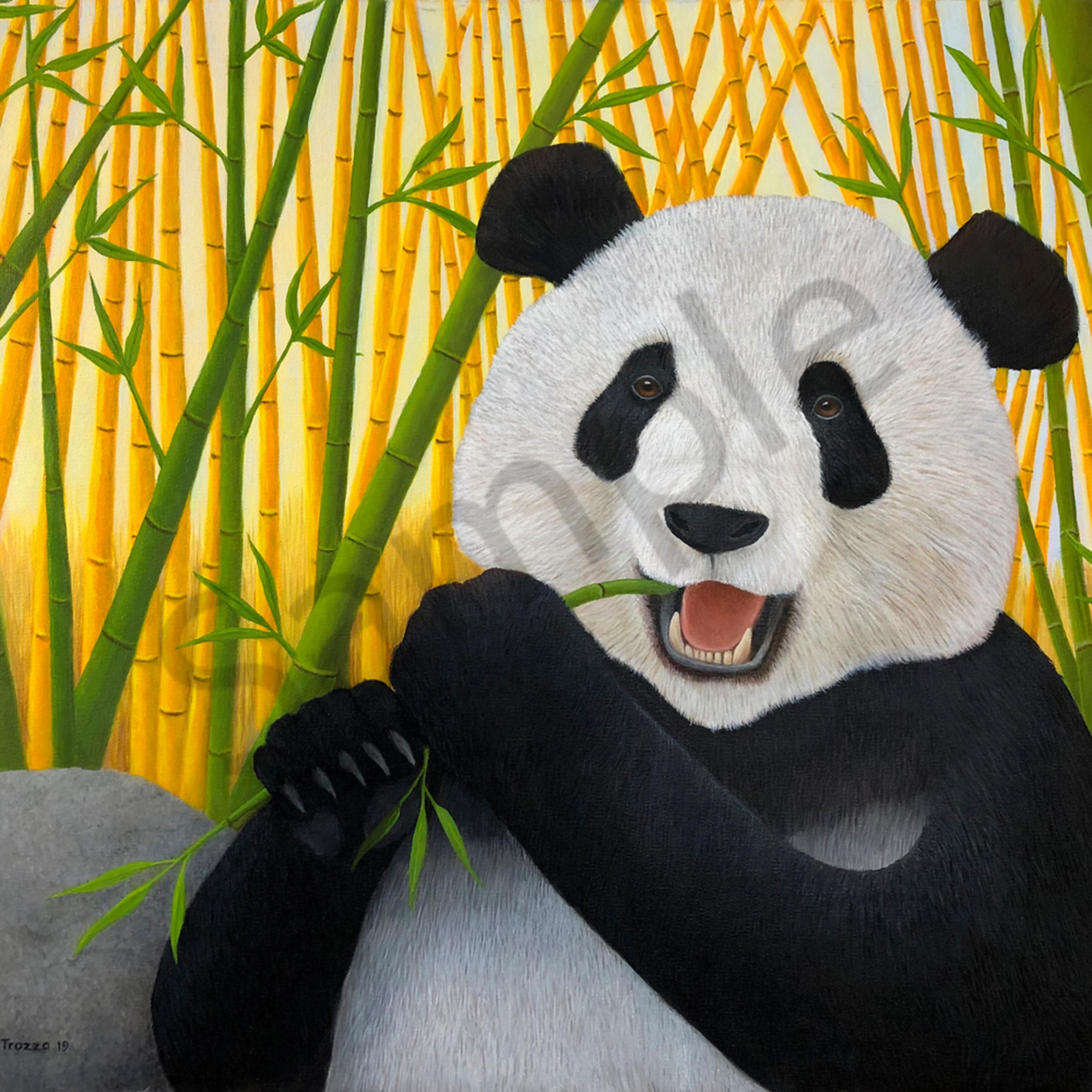 Panda hi res ft fvroyi