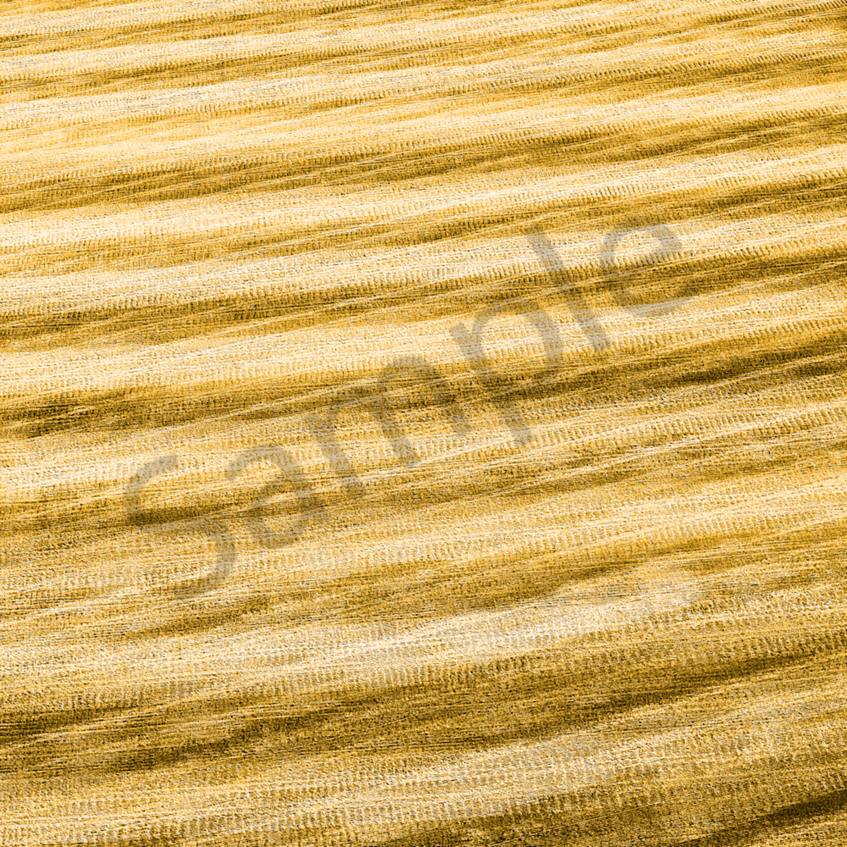 Golden golden egzosc