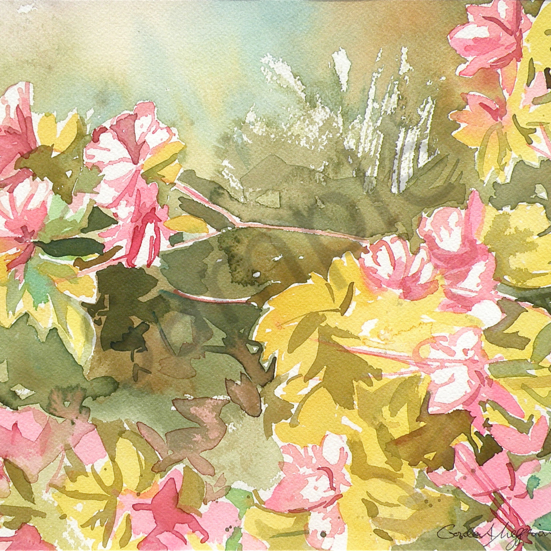 Azaleas in spring 1 12 x14 watercolor qiwayh