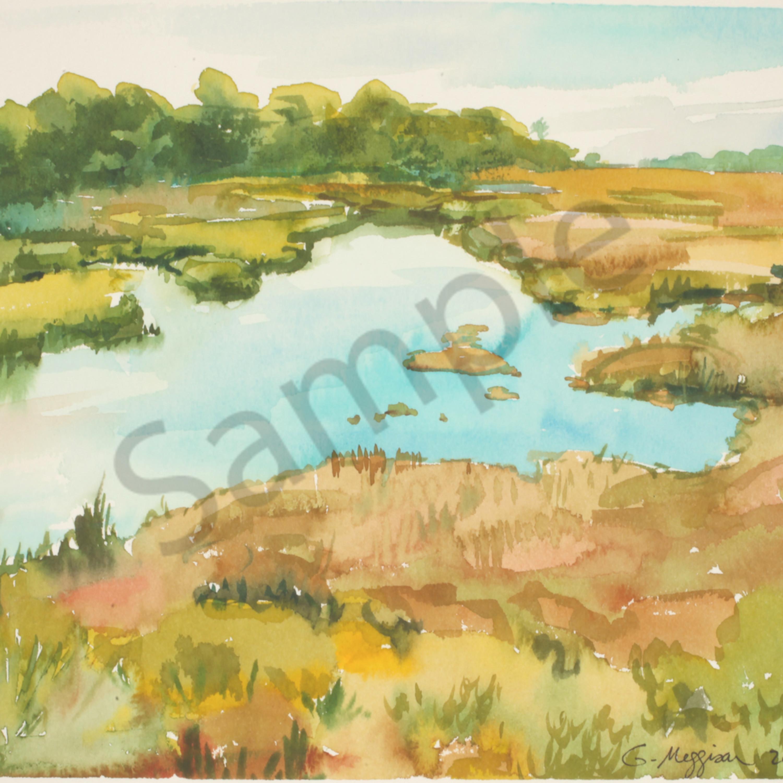 Talbot marsh 10 x12 print n2ea4i