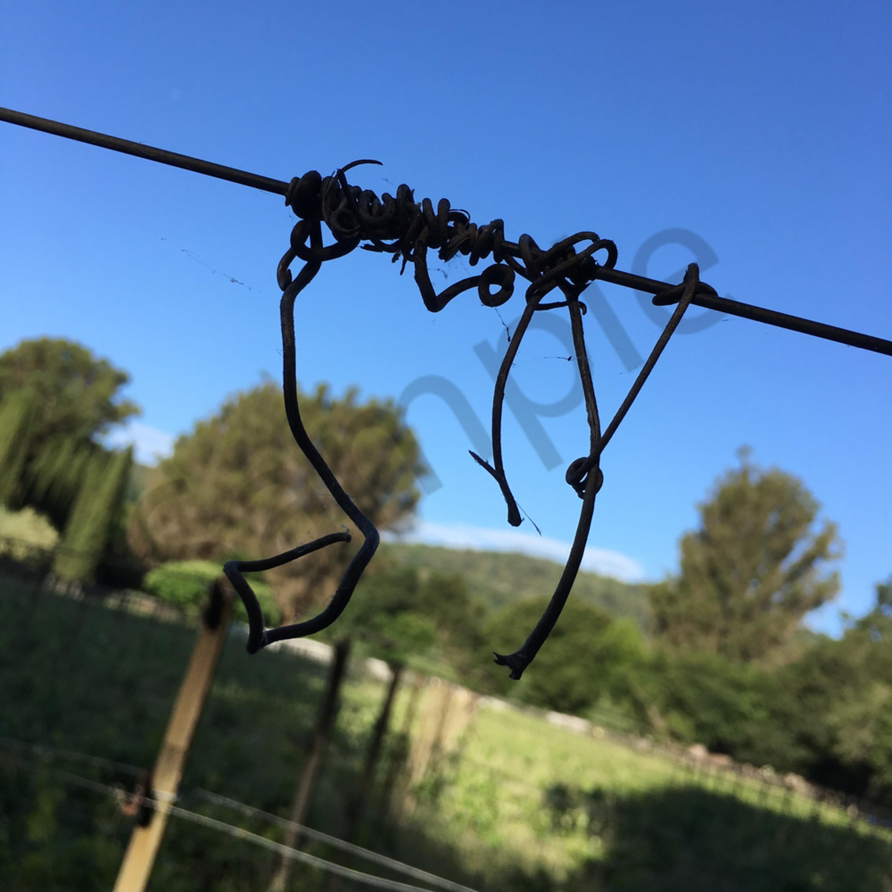 Left wine country vd9grg
