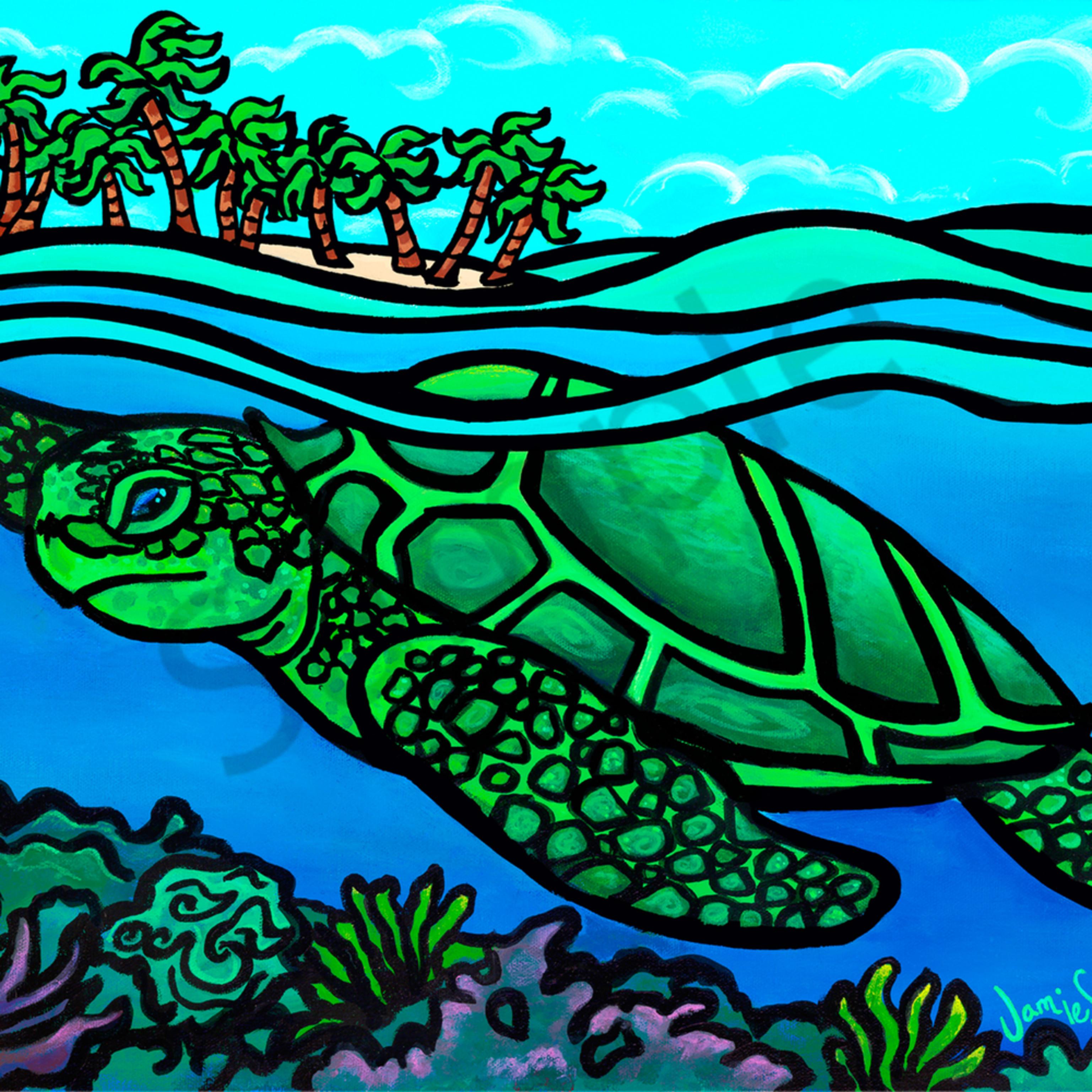 Ai swim above the reef iwhjkn