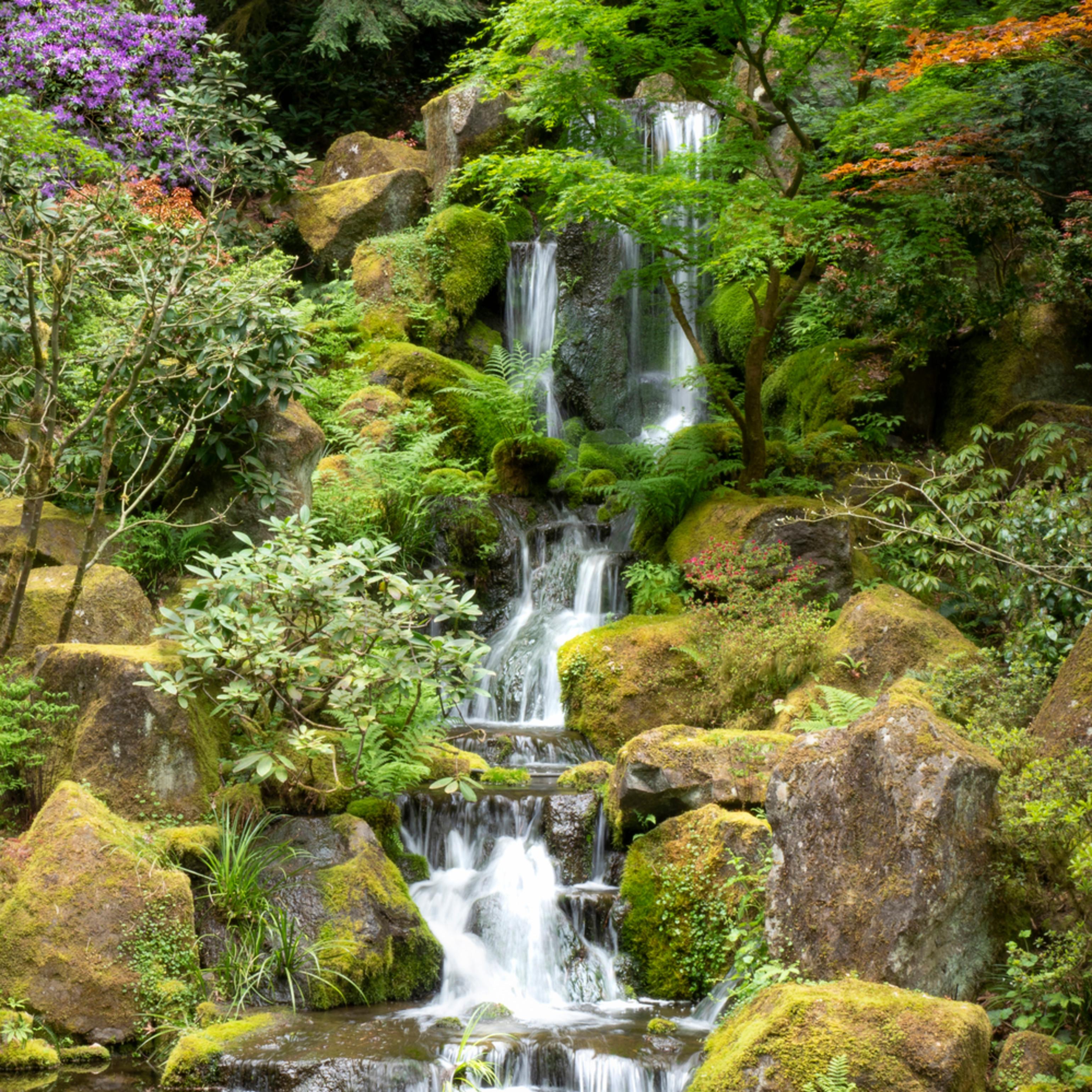 Eden s falls 2 mrqhh1