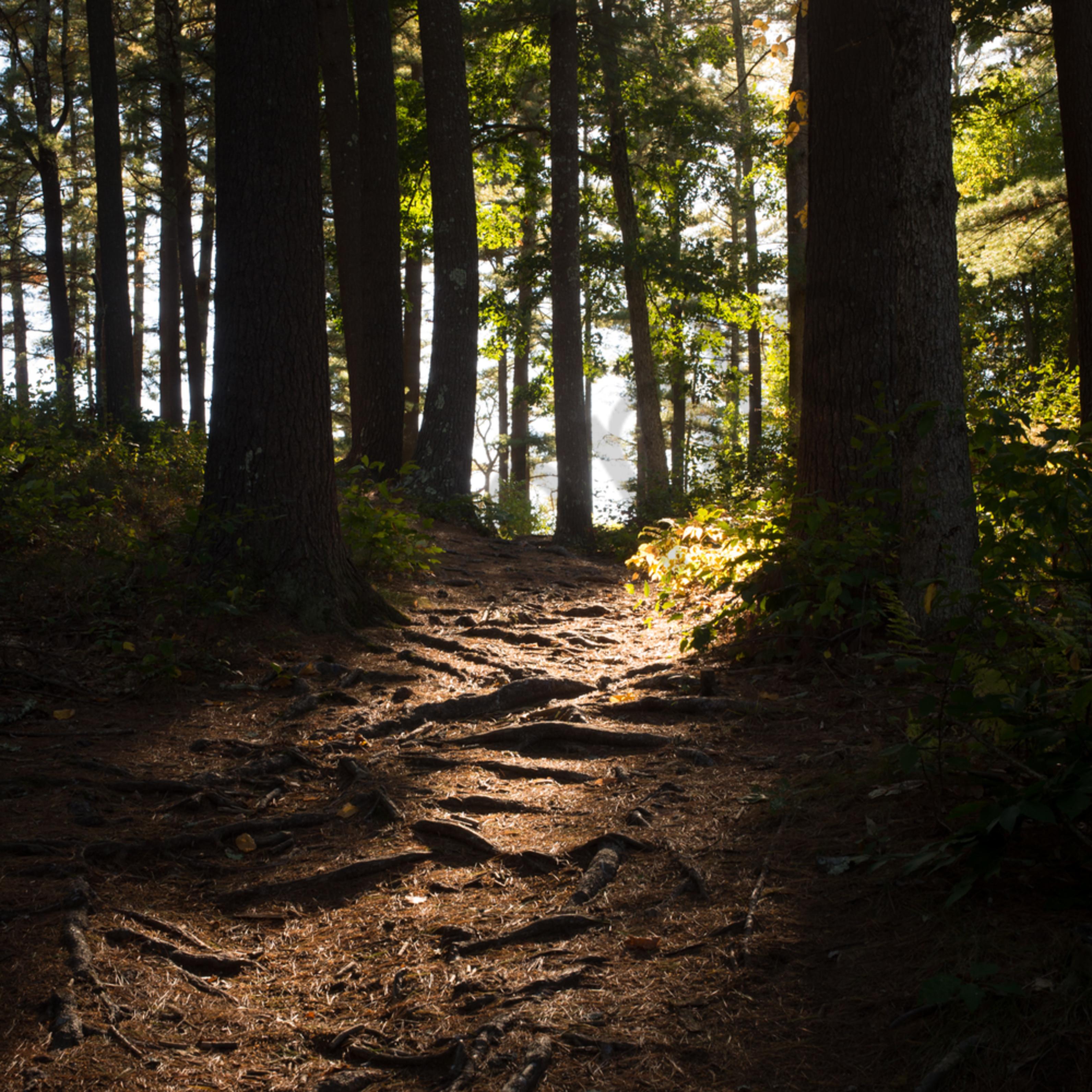 A brighter path h5dcuh