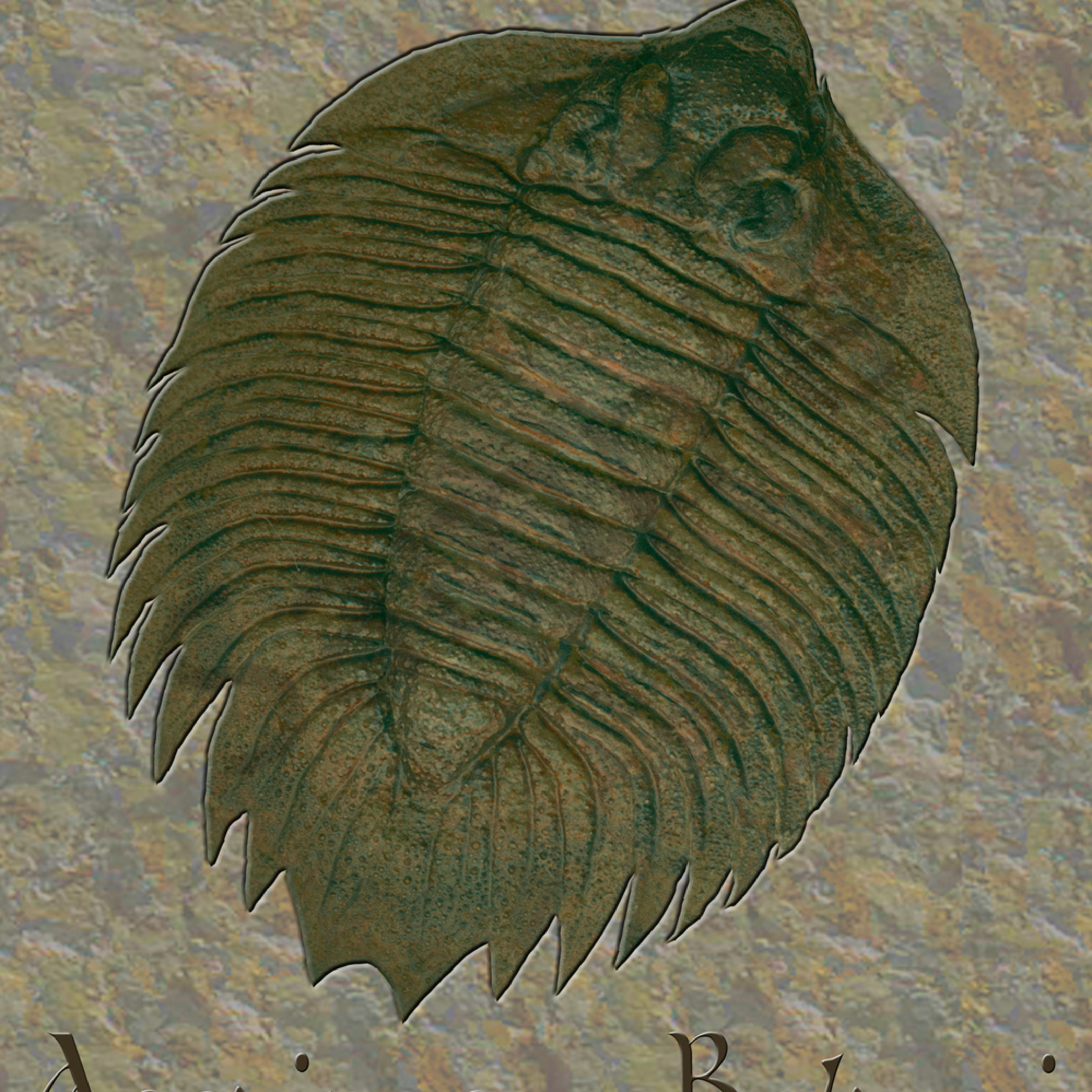 Arctinurus boltoni puzzle ecpi1w