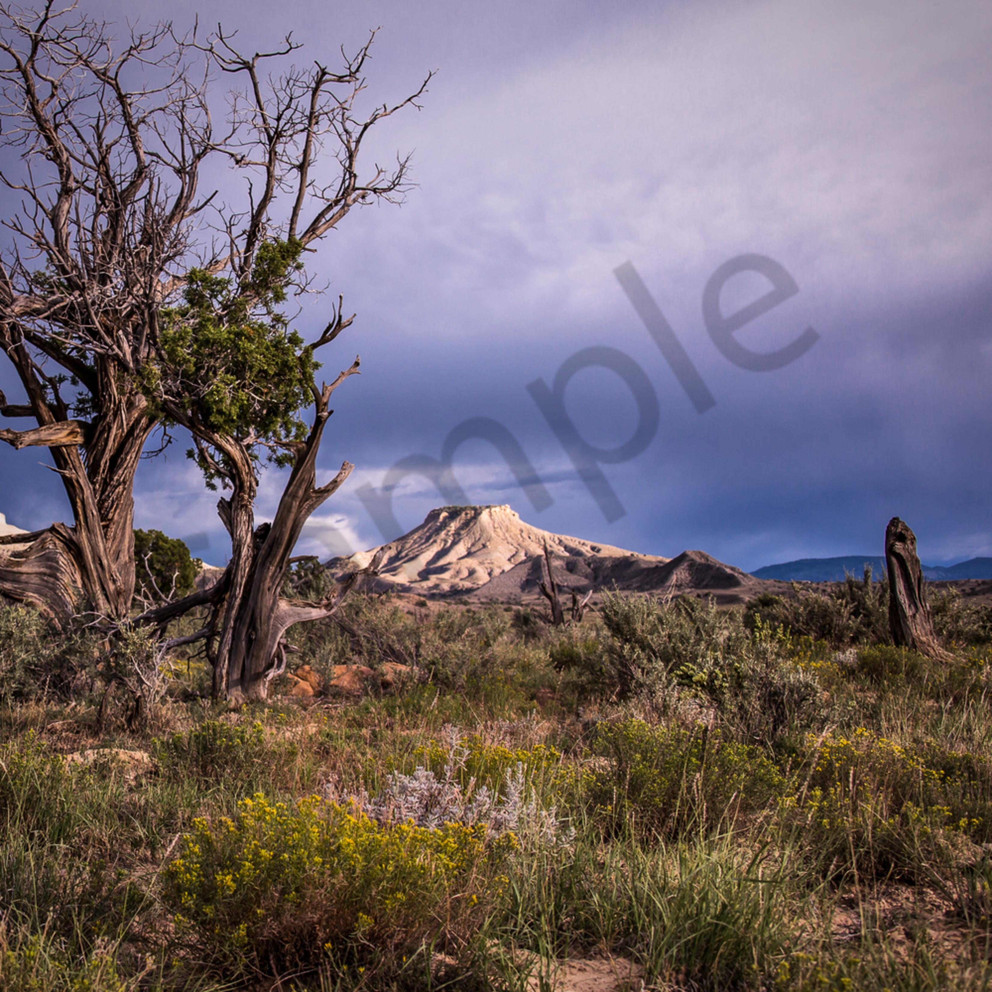 Desert serenity 2 wakit2