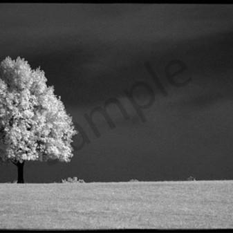 Solitude ii ajajxd
