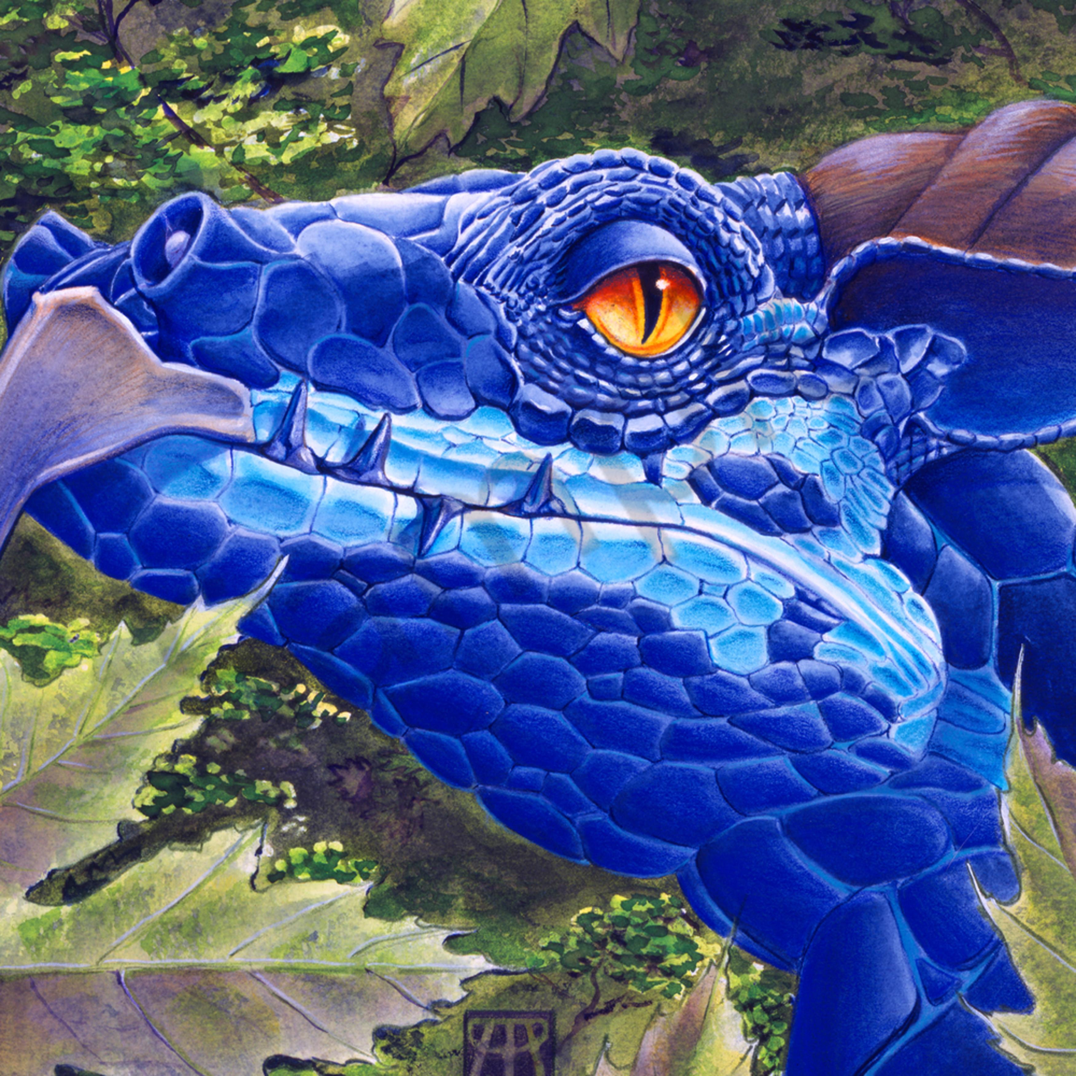 Dragon eyes large homqxa