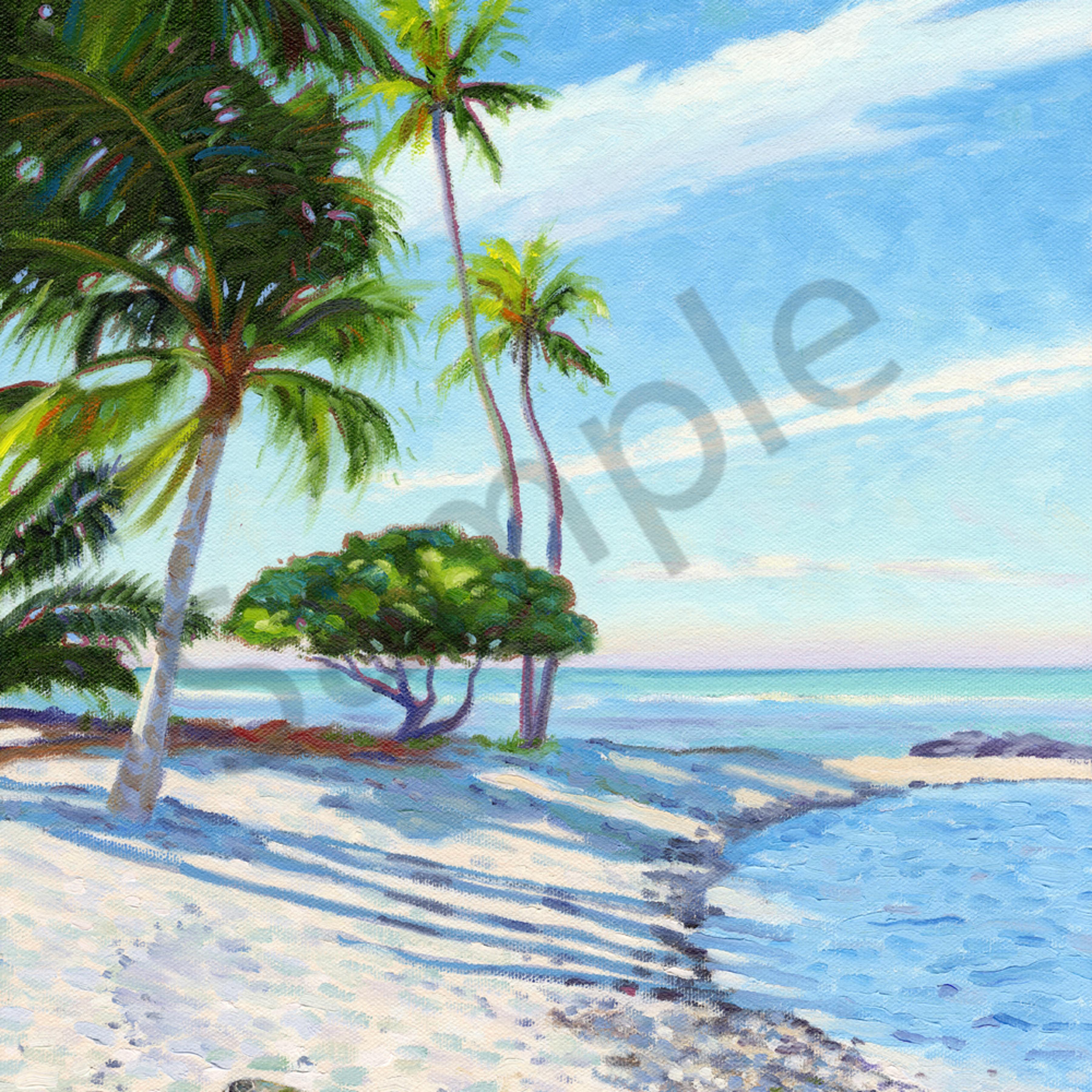 Kohala coast wtcdky