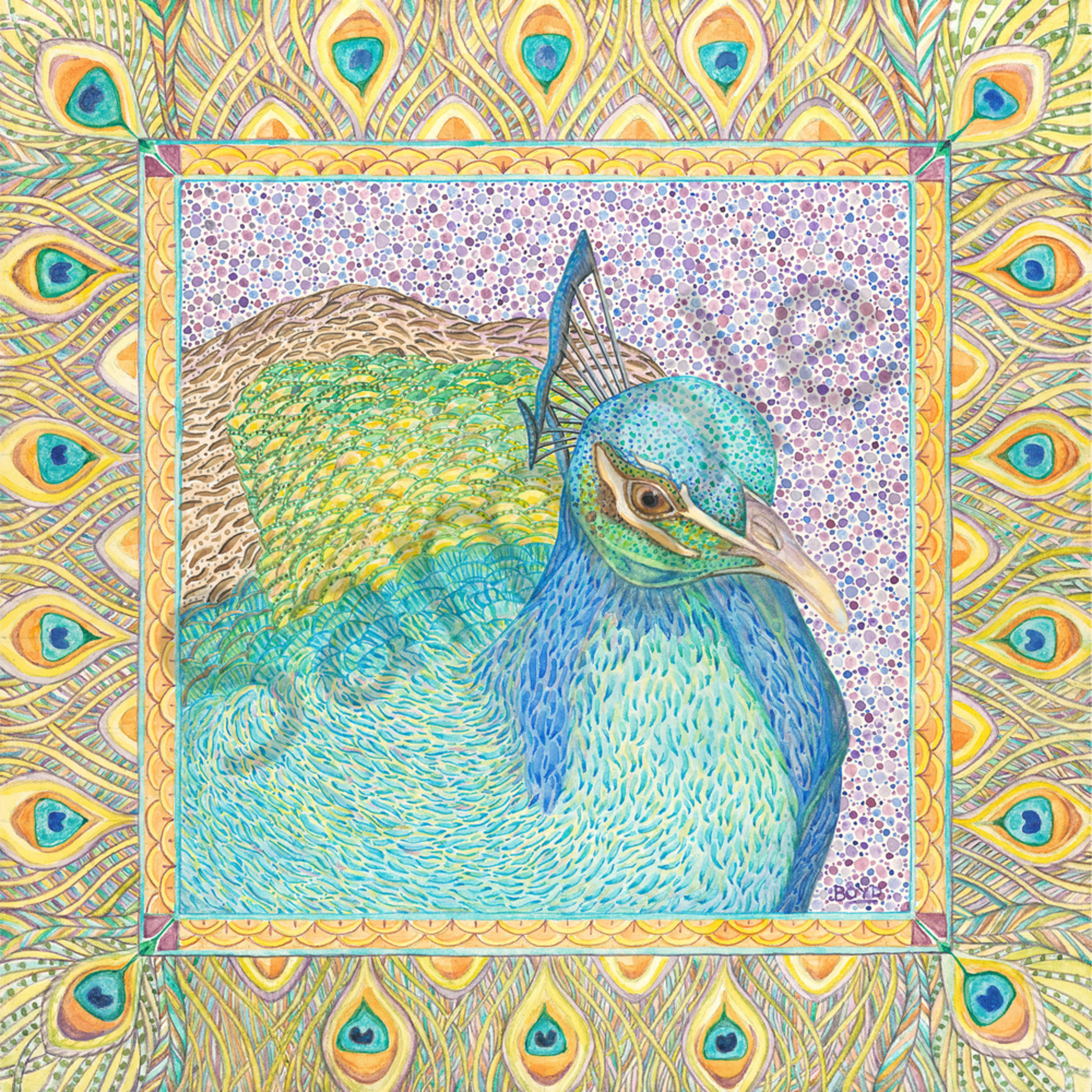 Indian peafowl med res g46lsn