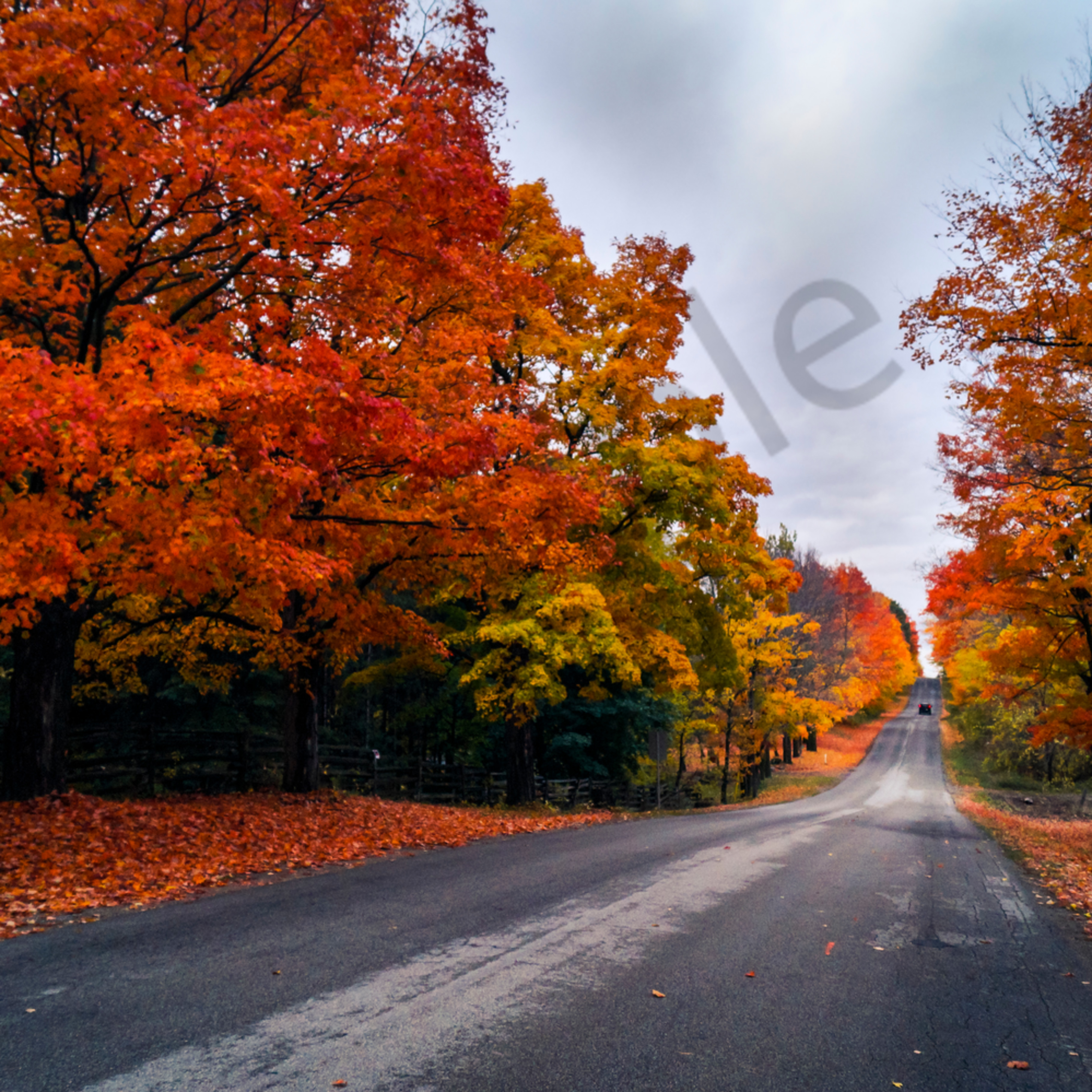 Country road in autumn fzmeoc