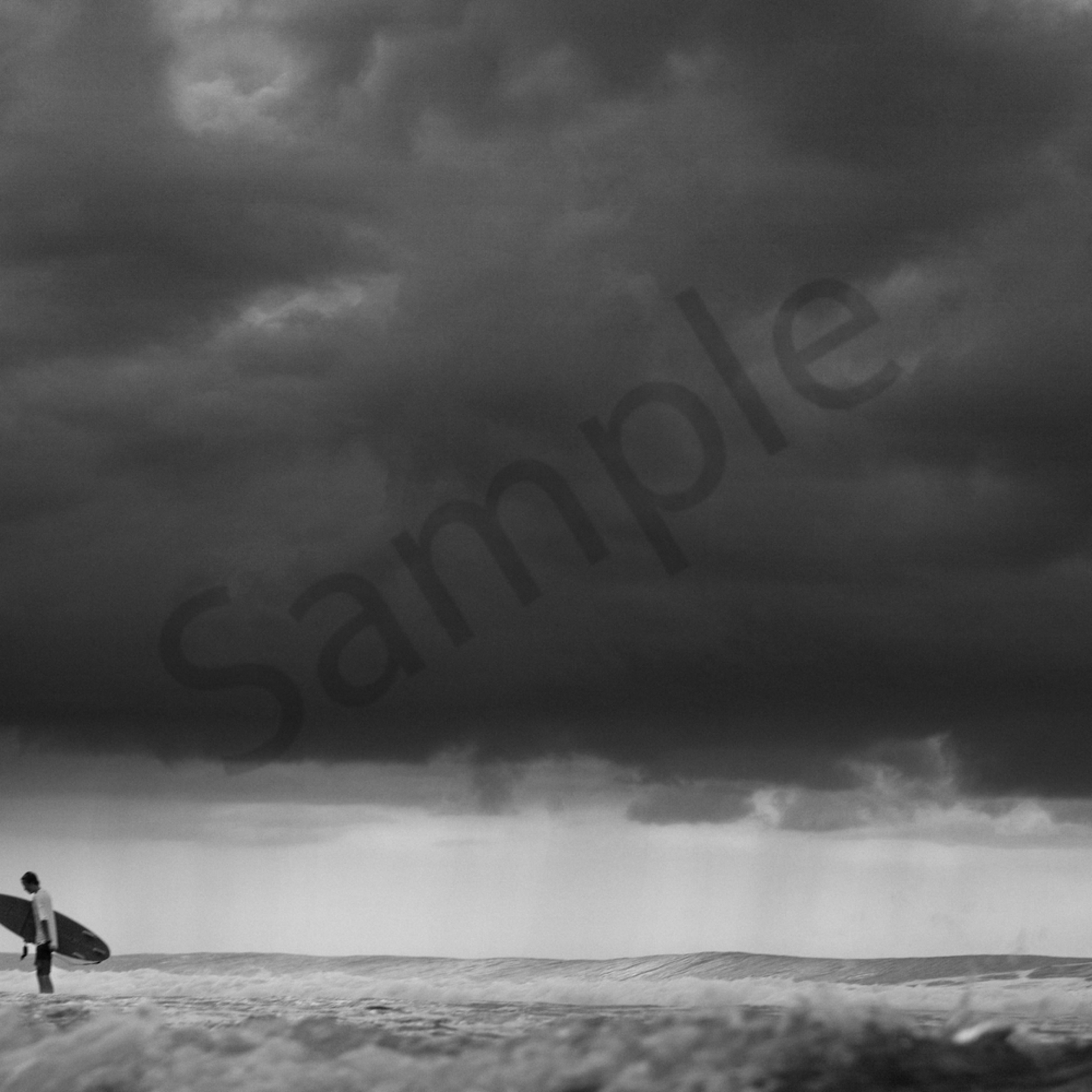 Surfer 1 2 zrfxmh