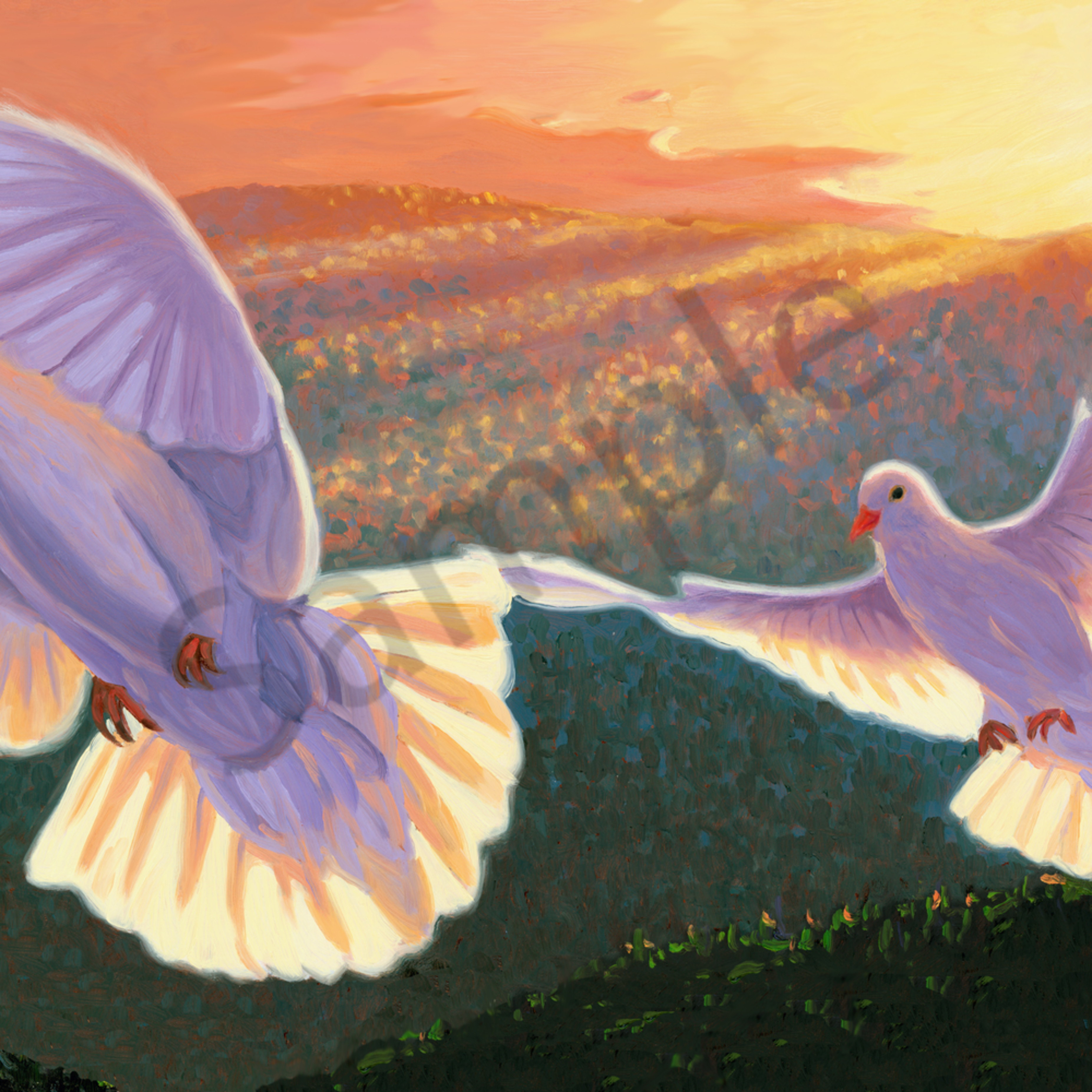 Doves wenknd